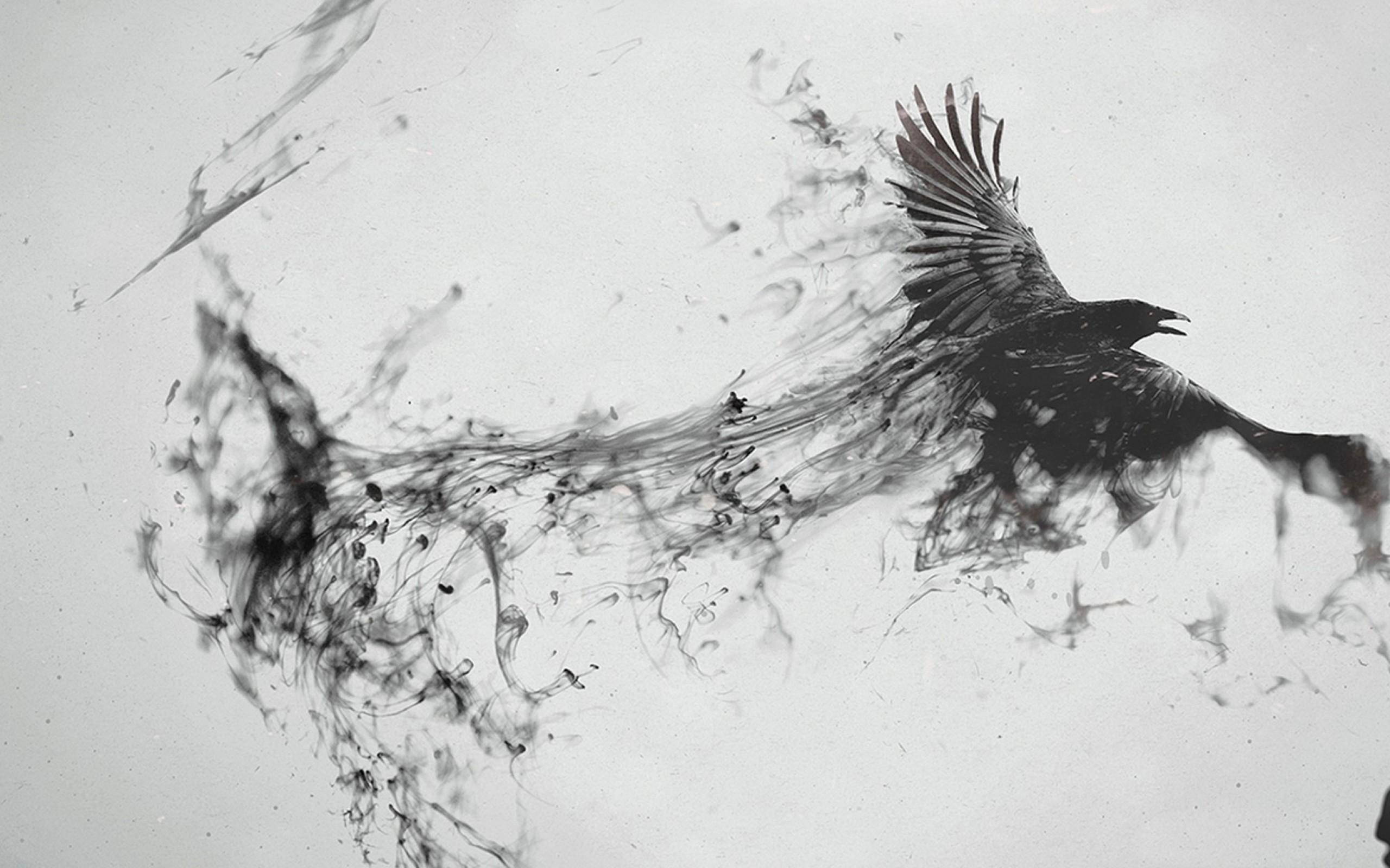 Dibujo En Blanco Y Negro De Animales