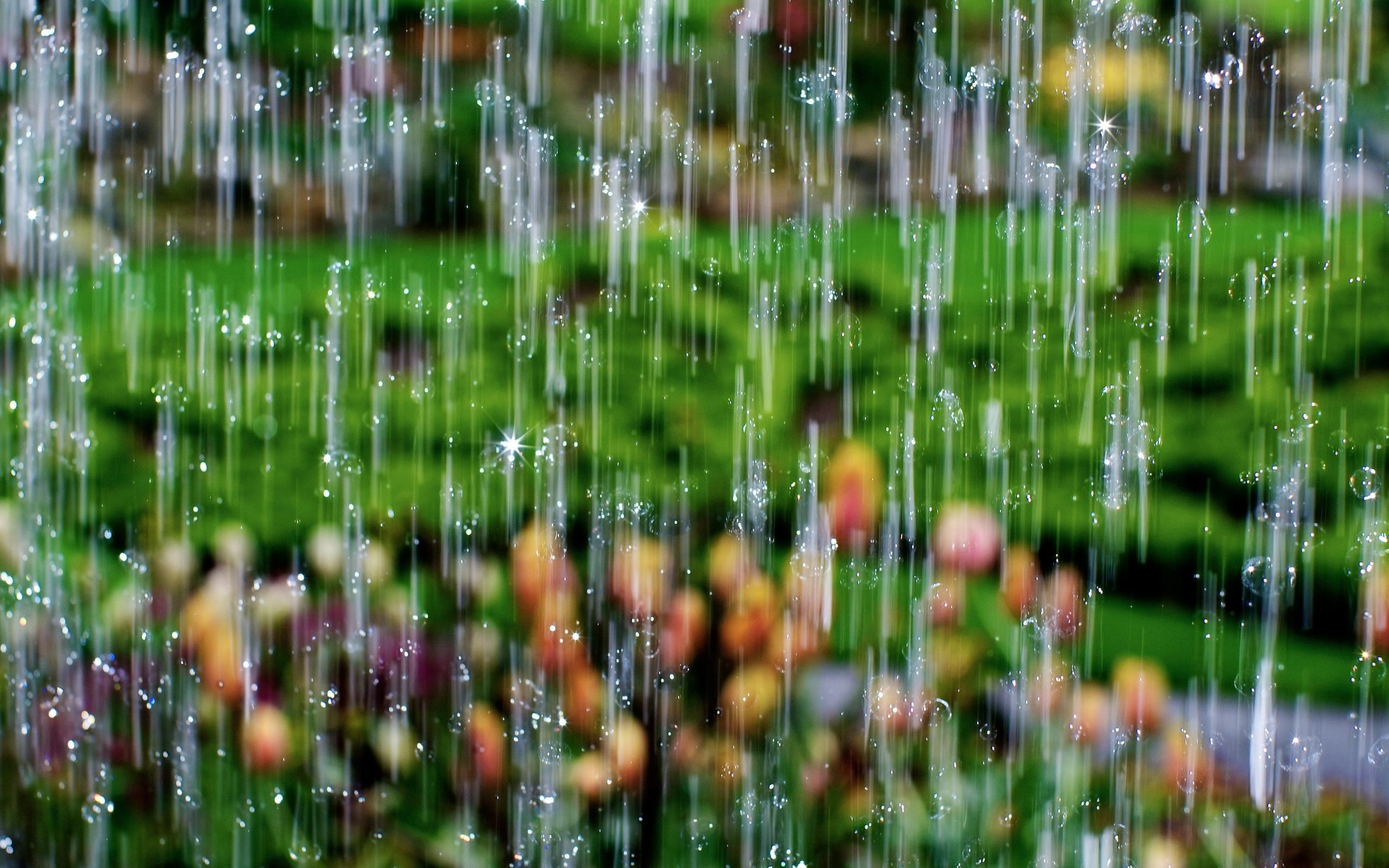 лазеротерапия самые лучшие красивые живые картинки дождь губерлинских