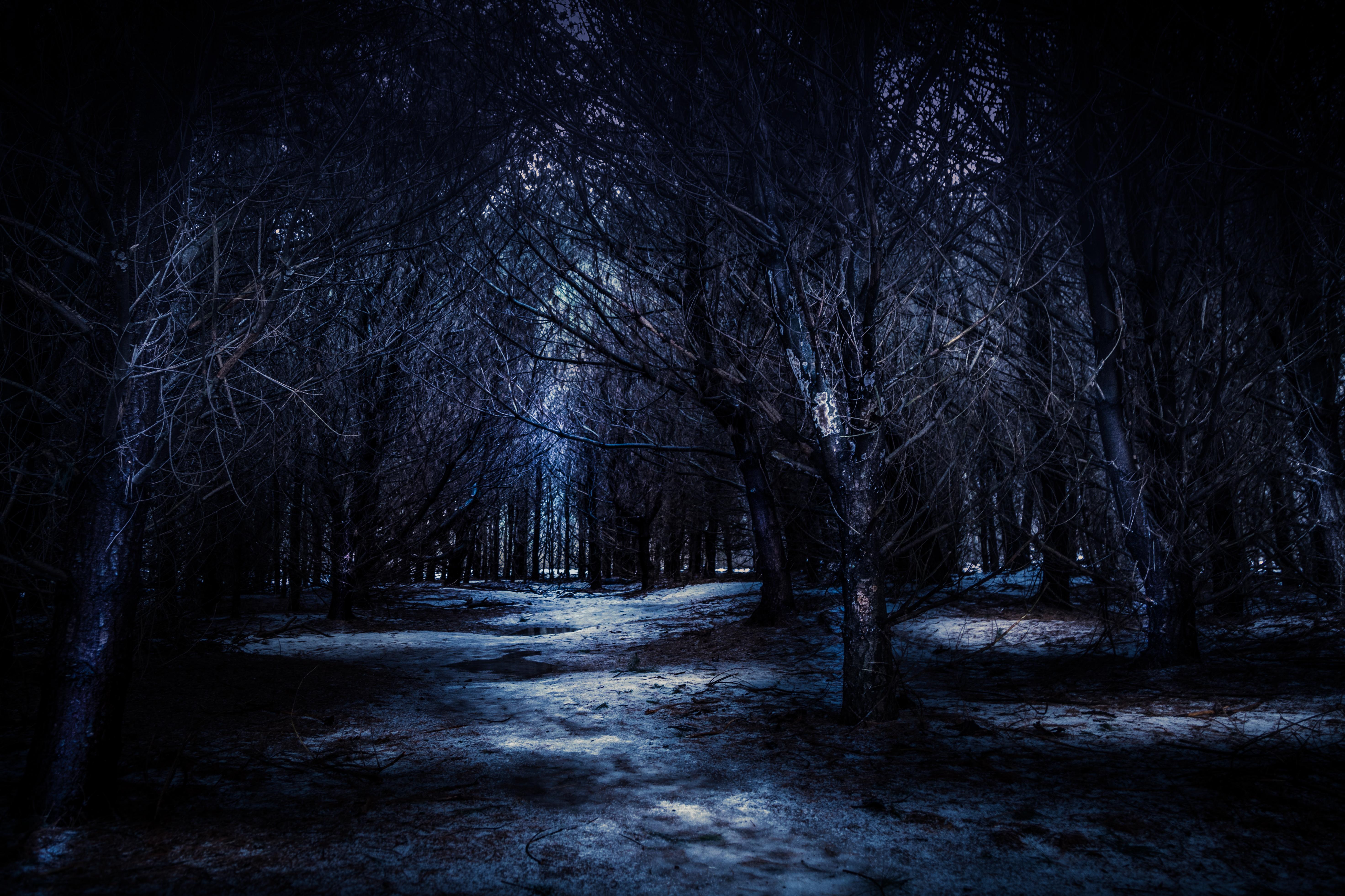картинки красивые мрак сама