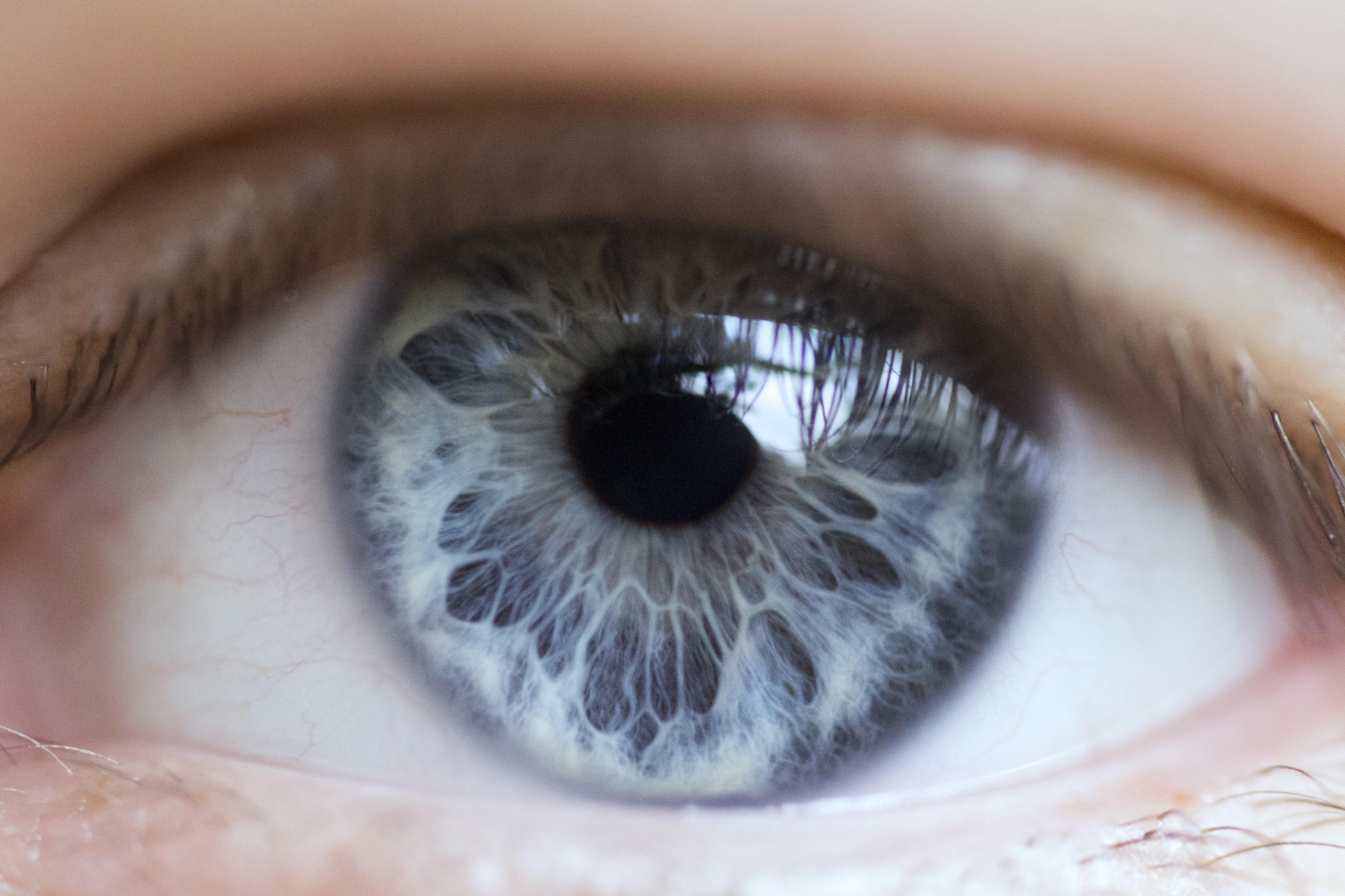 Картинки серых с голубым глазами много