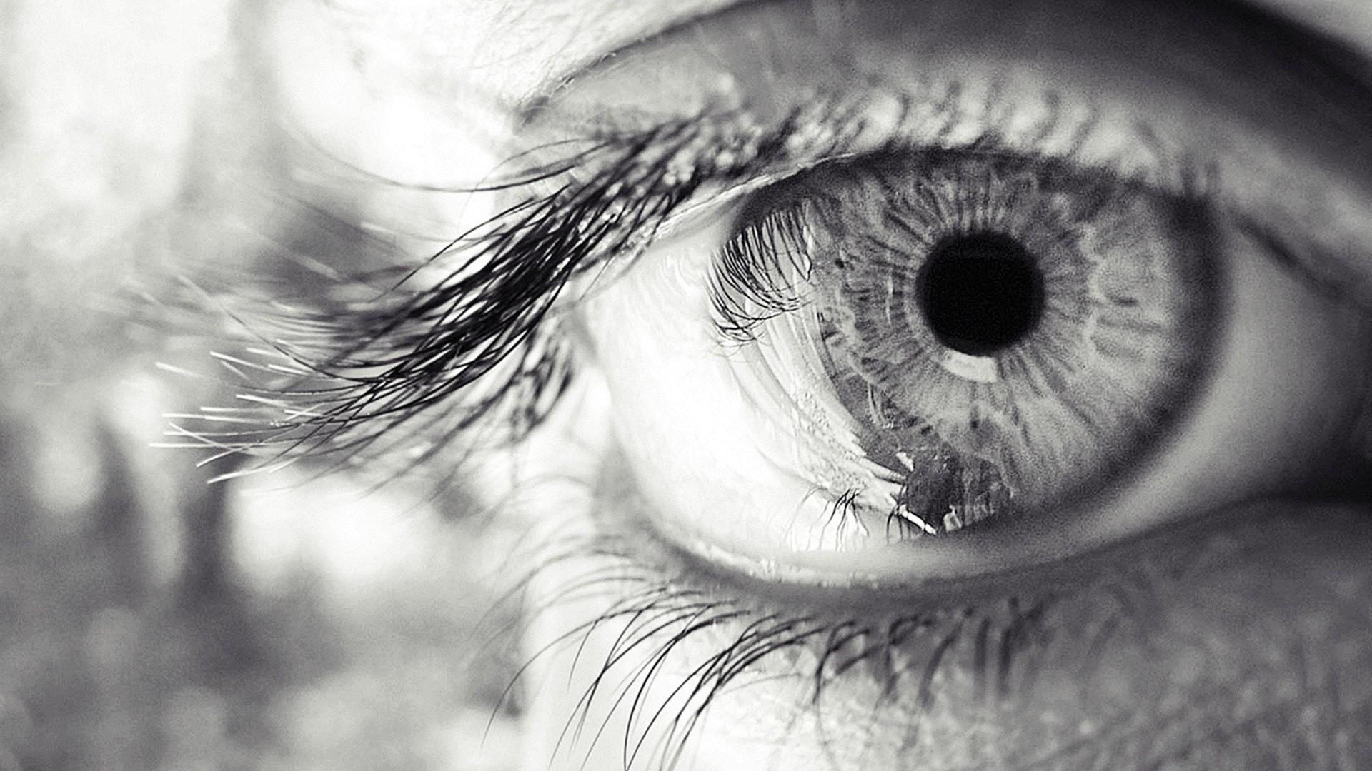 Eye eyelashes pupil black and white
