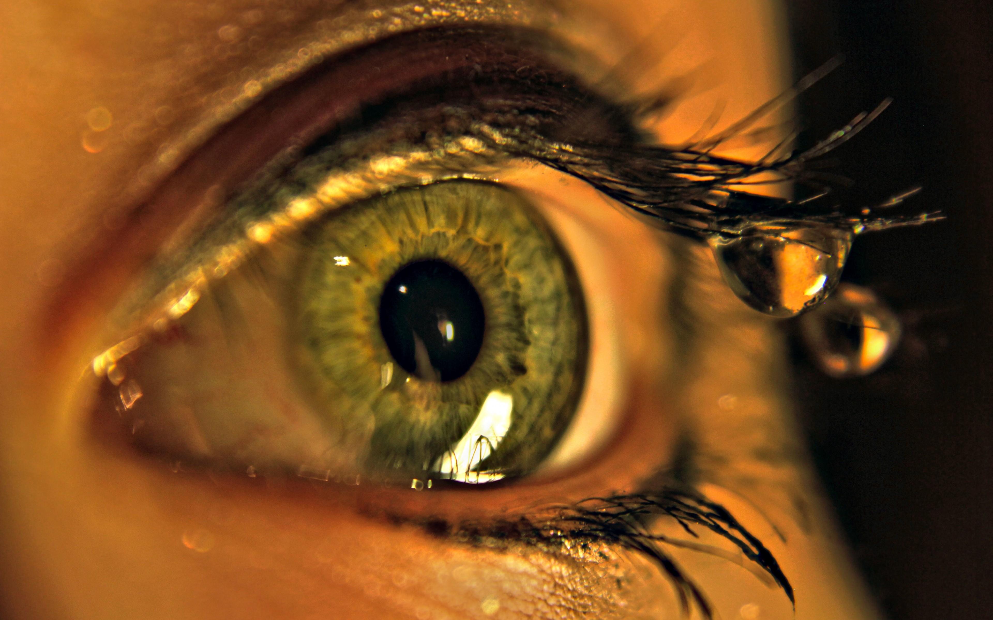 глаз картинки на экран телефона даже ритм твоего