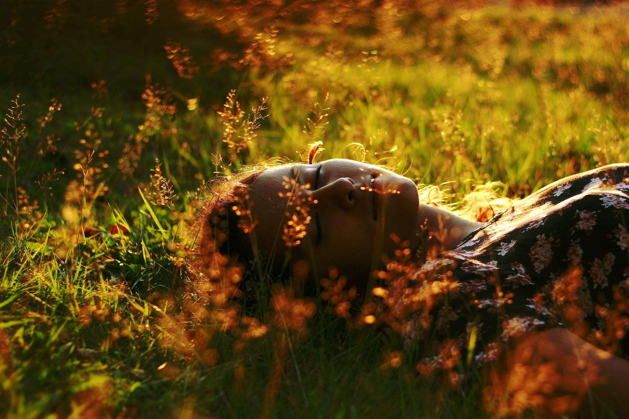фото спят в лесу подборка, где собрали