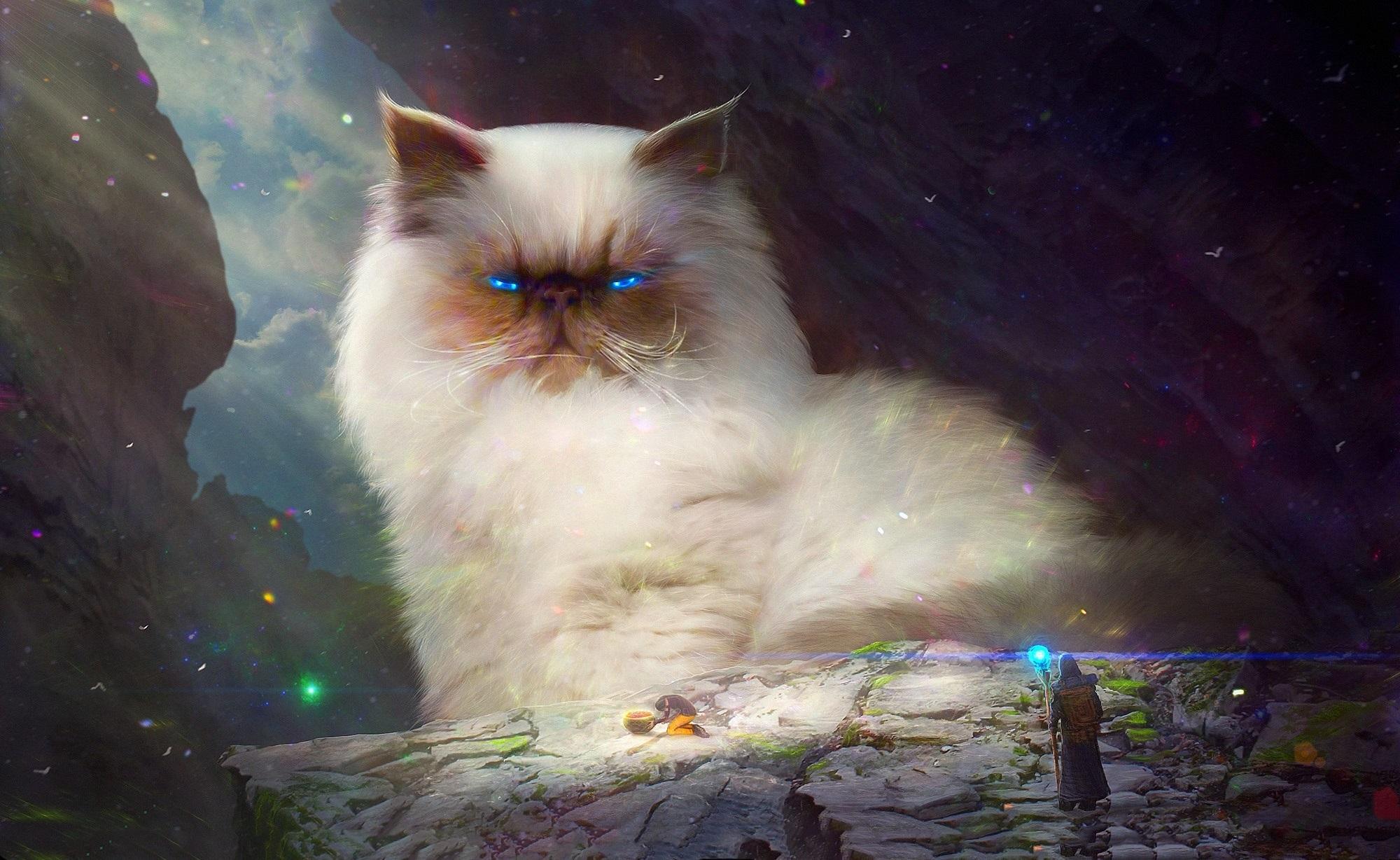 влад красивые картинки котов фэнтези участка