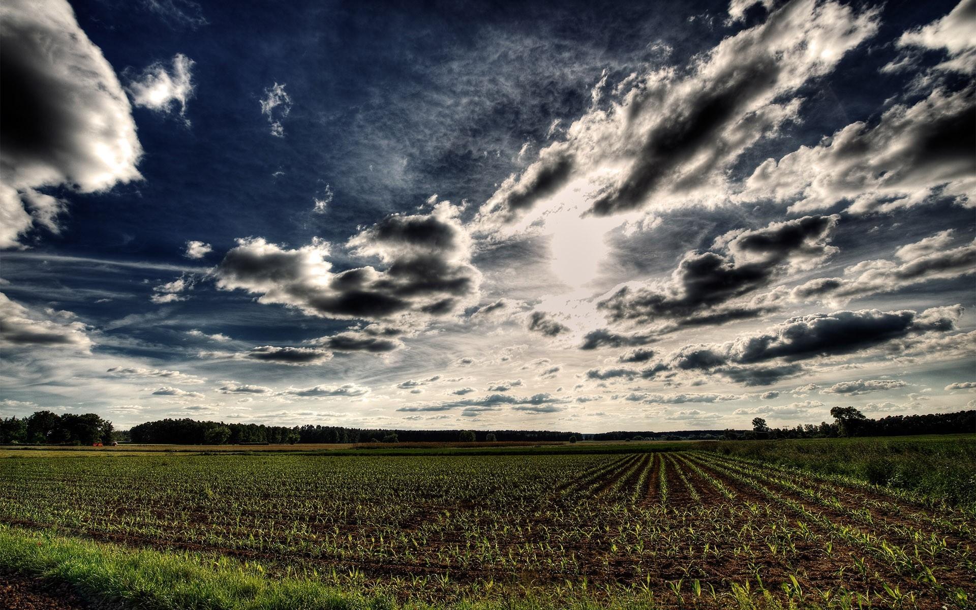 красивые картинки неба и земли тертый пирог вареньем