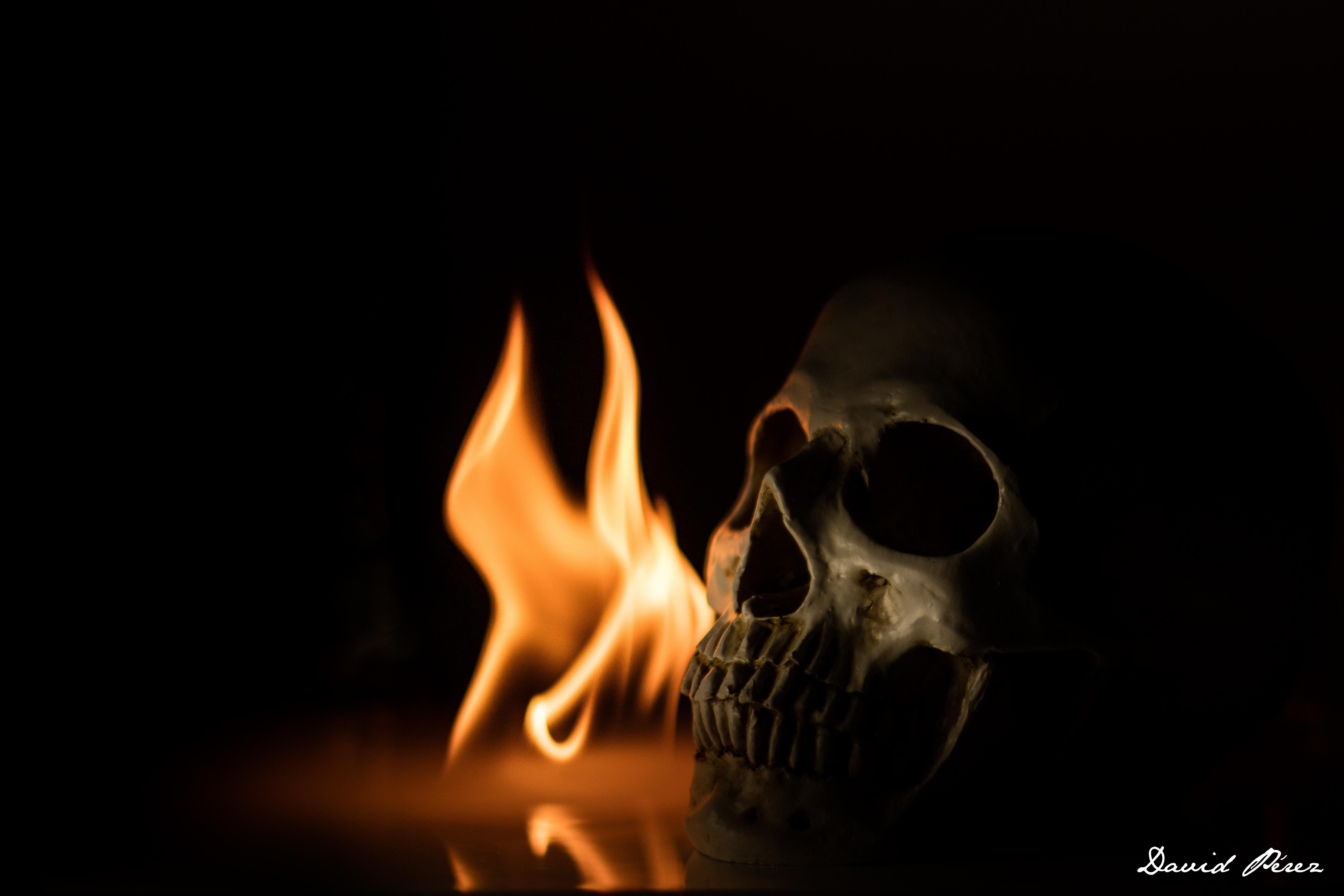 картинки горит череп лучшие фотостудии лисичанска
