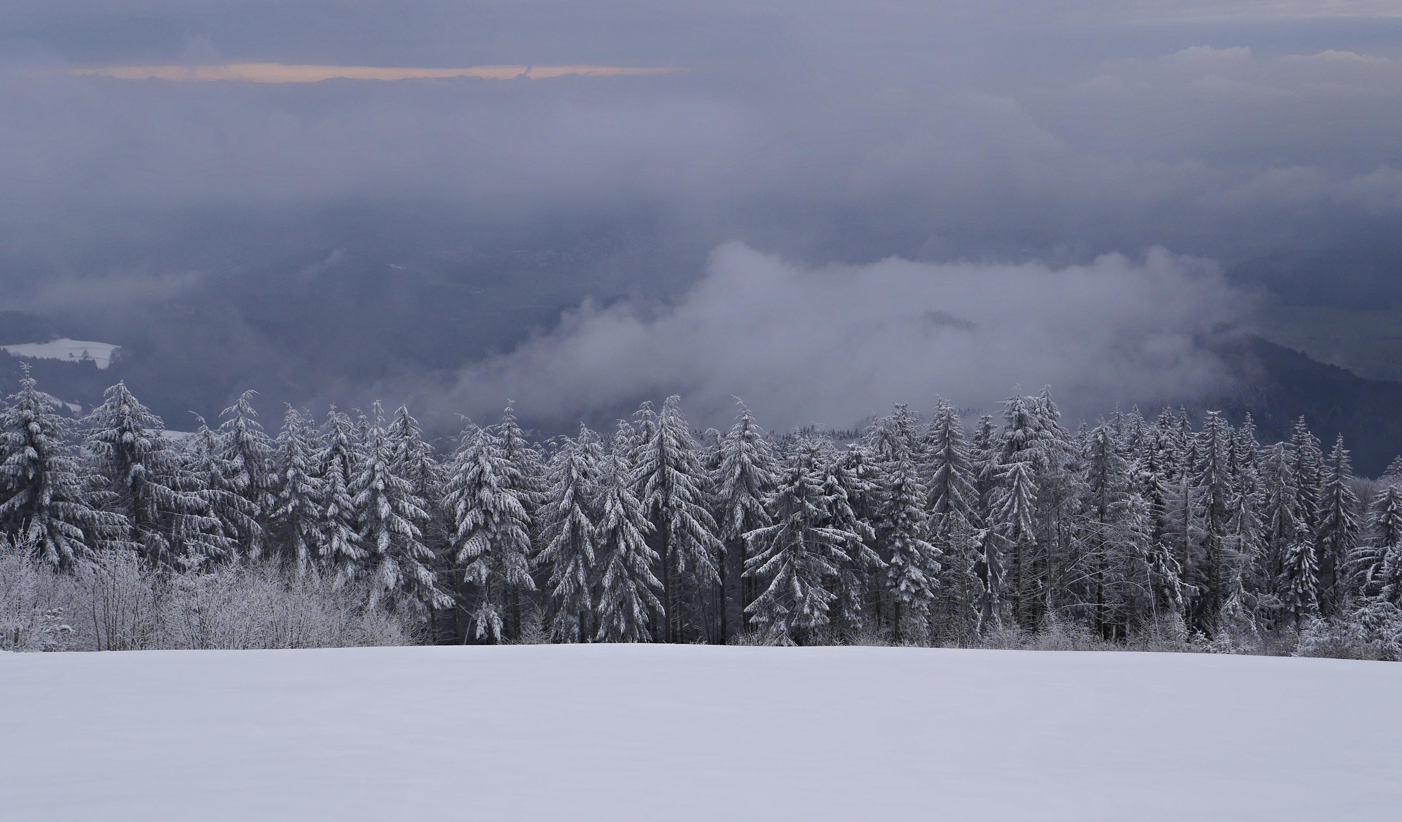 Wallpaper Flickr Stunning Georgesblaszczyk Winter Snow