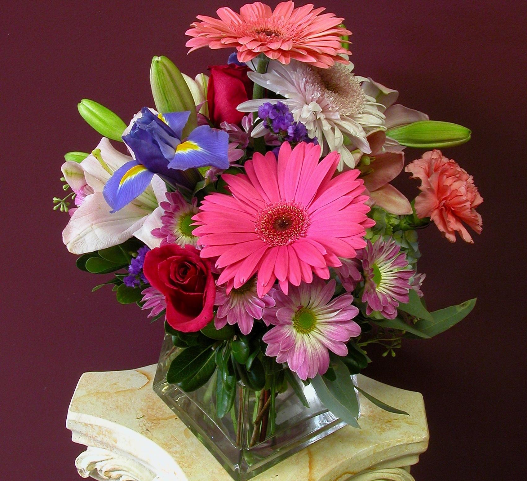 фото цветы герберы с днем рождения борисовна