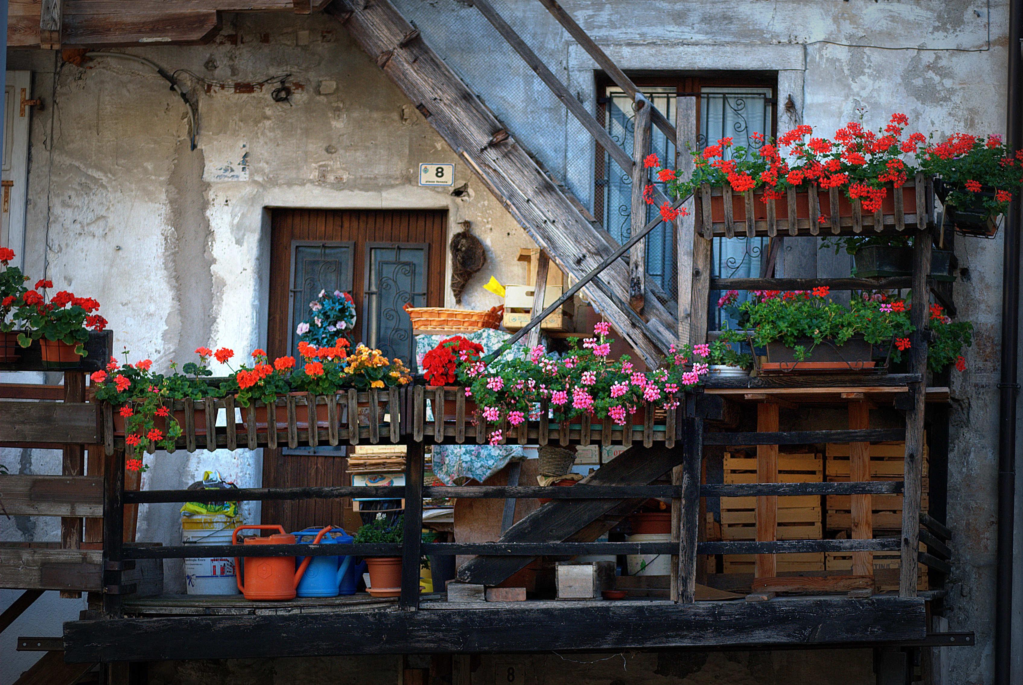 Baggrunde : blomst, by, vindue, plante, altan, blomster, kvarter ...