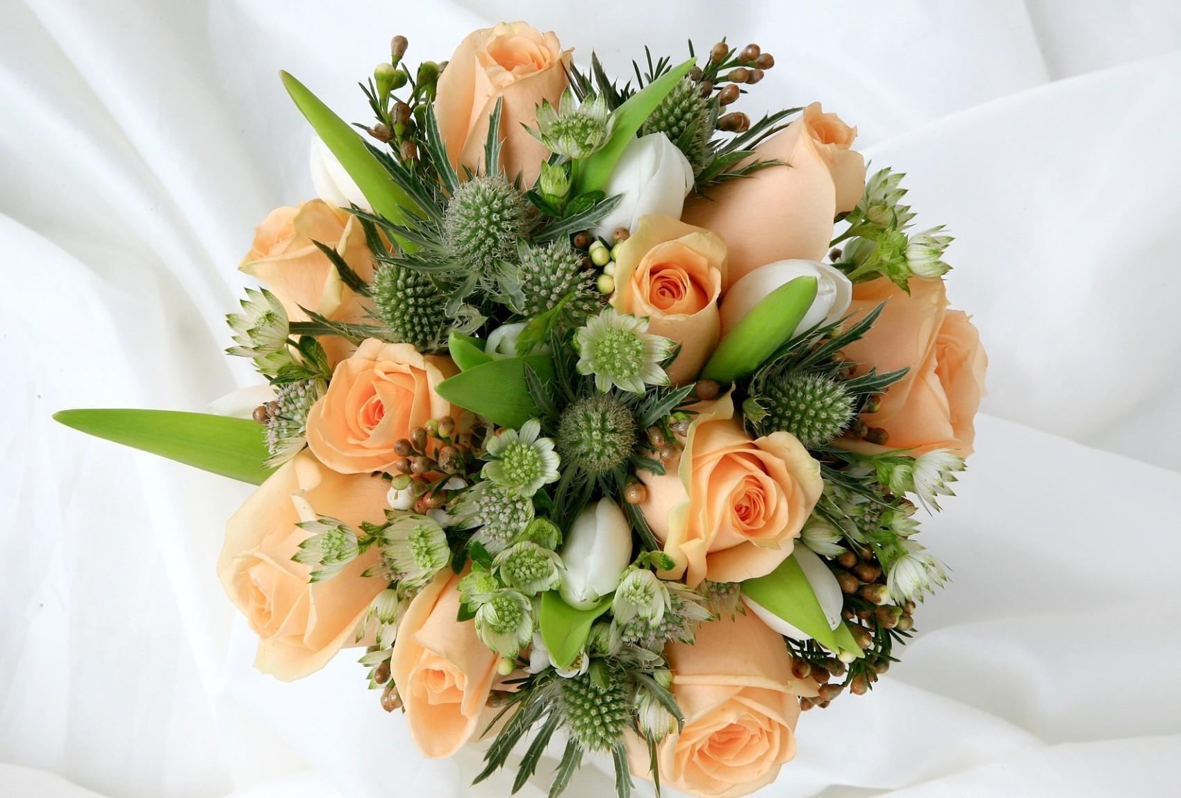 Afskårne Roser baggrunde : smuk, blomst, plante, dekoration, roser, buket