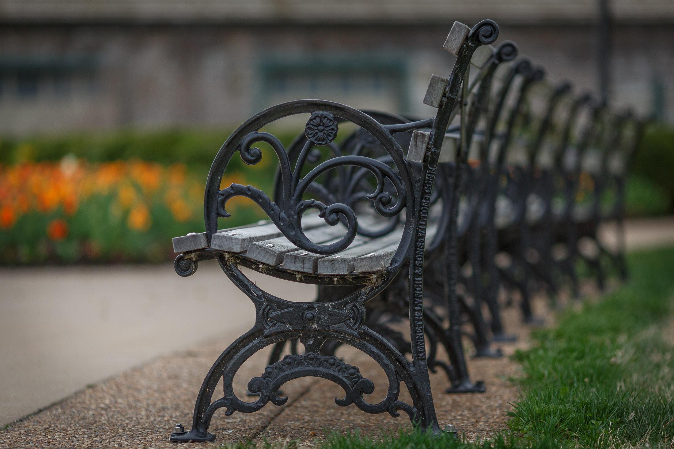Baggrunde : blomster, cykel, køretøj, grøn, bænk, skulptur, bokeh ...