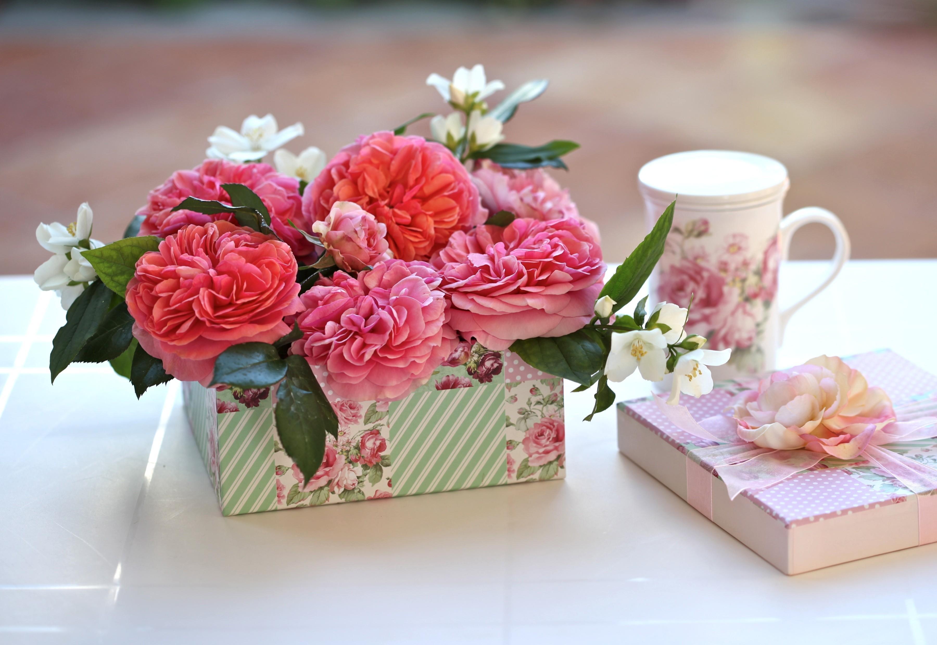 デスクトップ壁紙 フラワーズ カップ ピンク 工場 バラ 贈り物