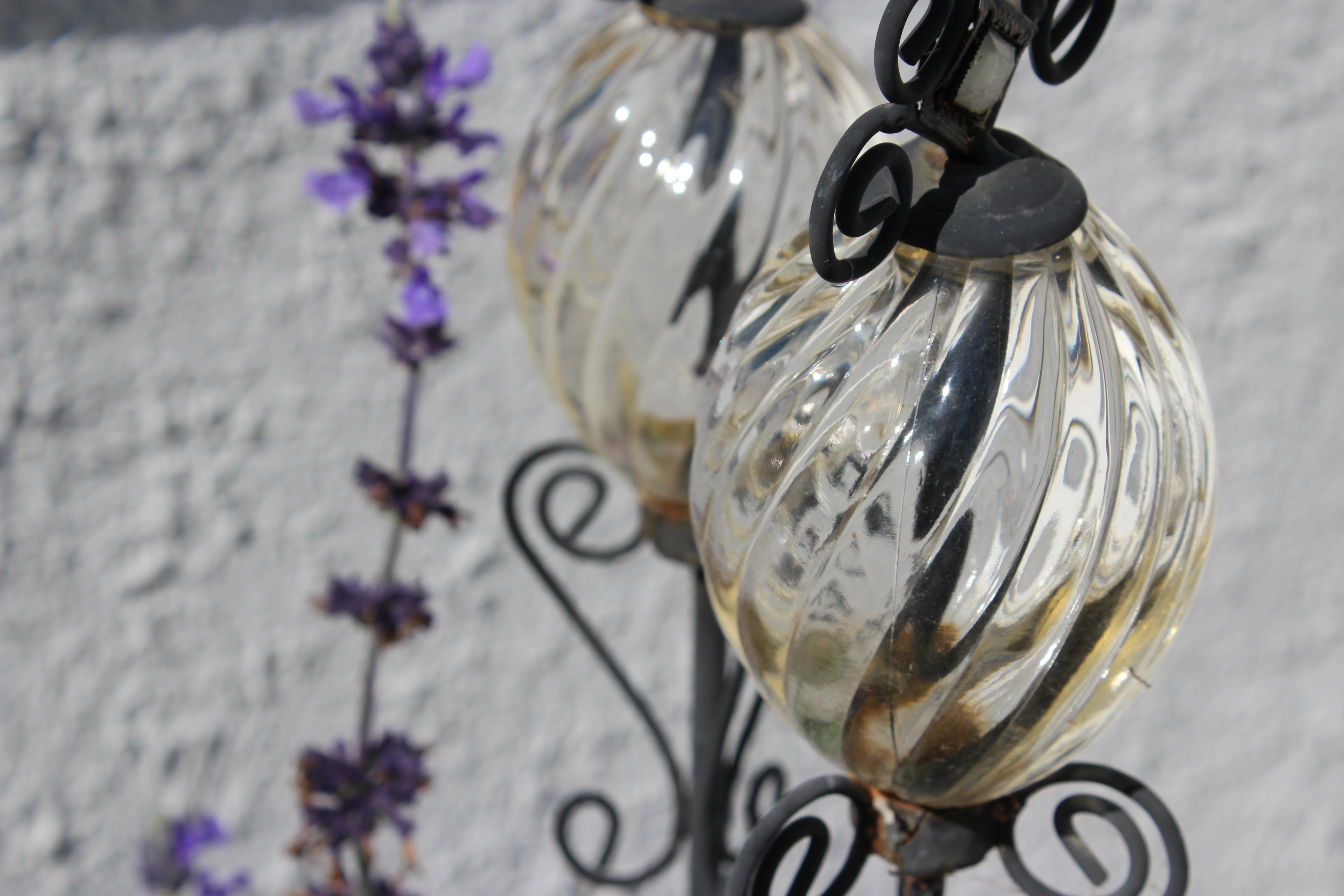 Fond d\'écran : fleurs, jardin, verre, Canon, argent, 100, ART ...