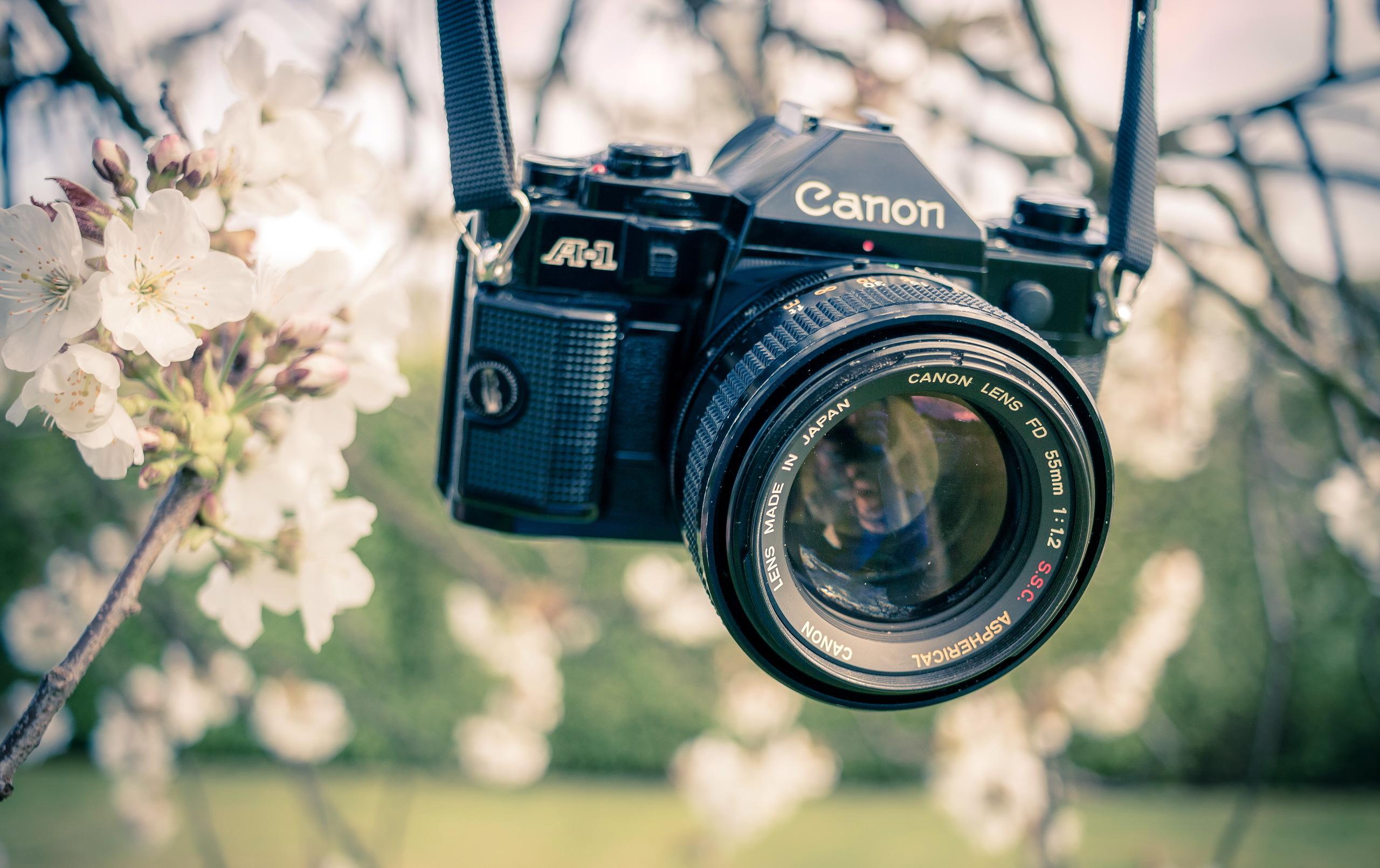 Картинки фотоаппаратов красивые, годовщине