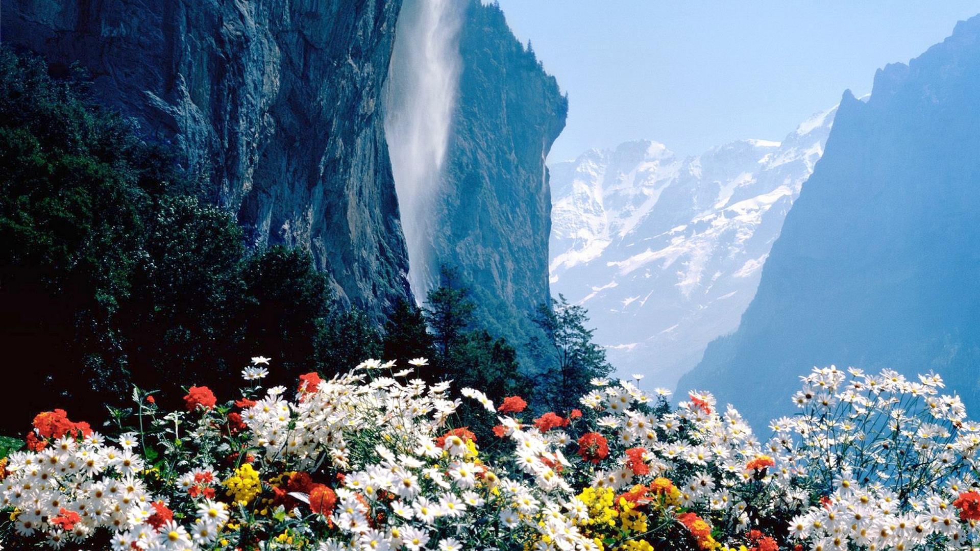 меня с добрым утром красивые картинки с природой фото научится своевременно уступать
