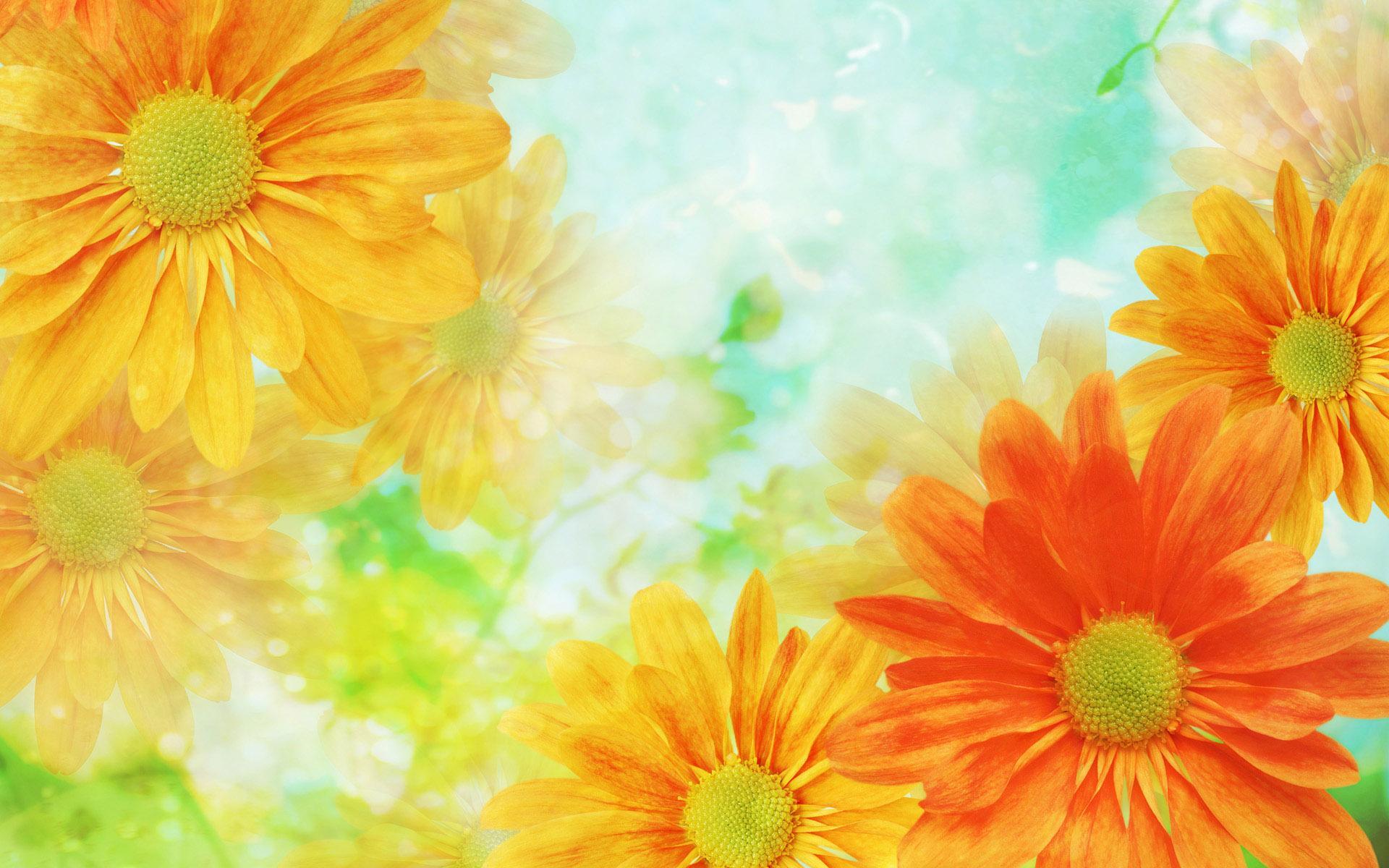 Картинки красивые цветы со смыслом (37 фото) Прикольные 63