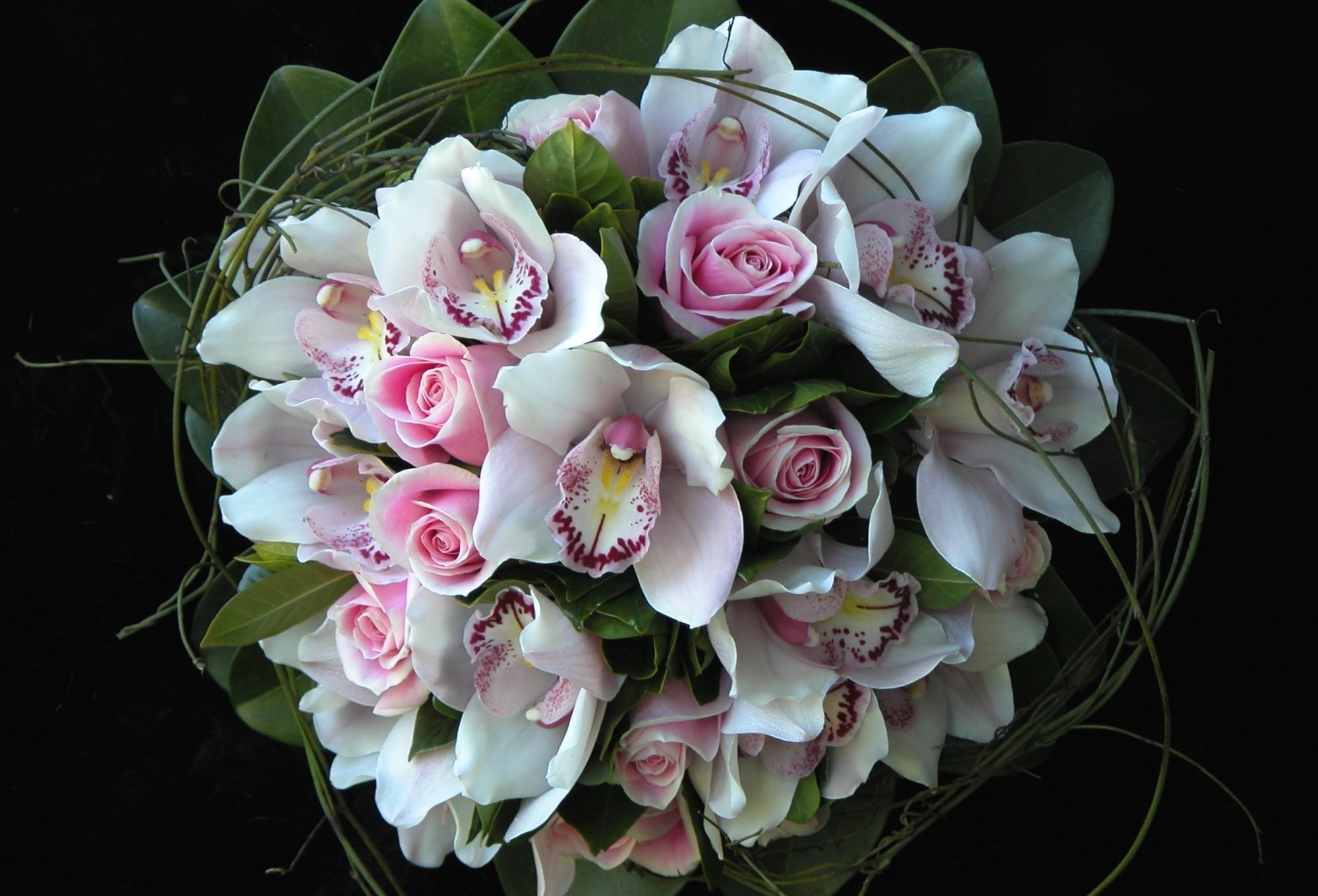 Mazzo Di Fiori Orchidee.Sfondi Orchidee Verde Rosa Mazzi Di Fiori Arte Fiore Flora