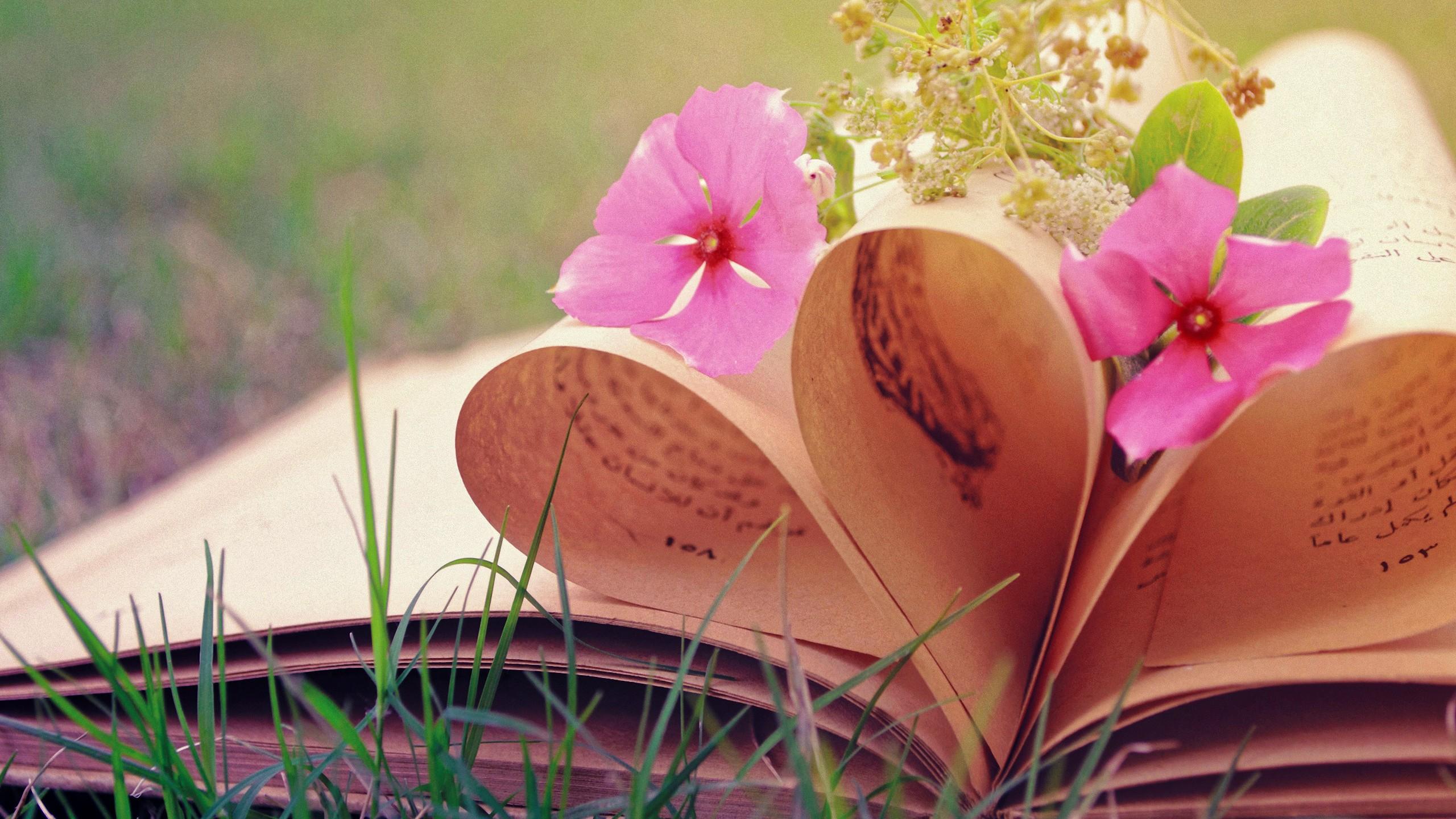 Цветок и книга картинки