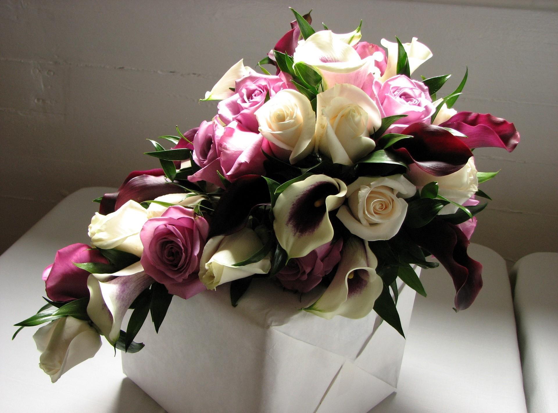 Fabelhaft Hintergrundbilder : Rosa, Calla lilien, KUNST, Blume, Flora &TJ_03
