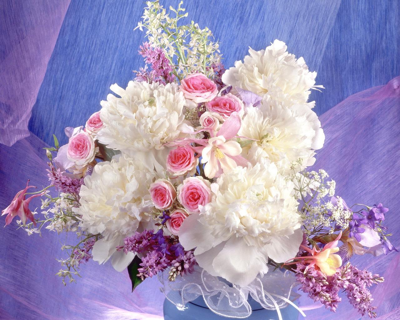 Hintergrundbilder lila bl hen rosa blume dekoration rosen bl tenblatt pfingstrose lied - Pfingstrosen dekoration ...