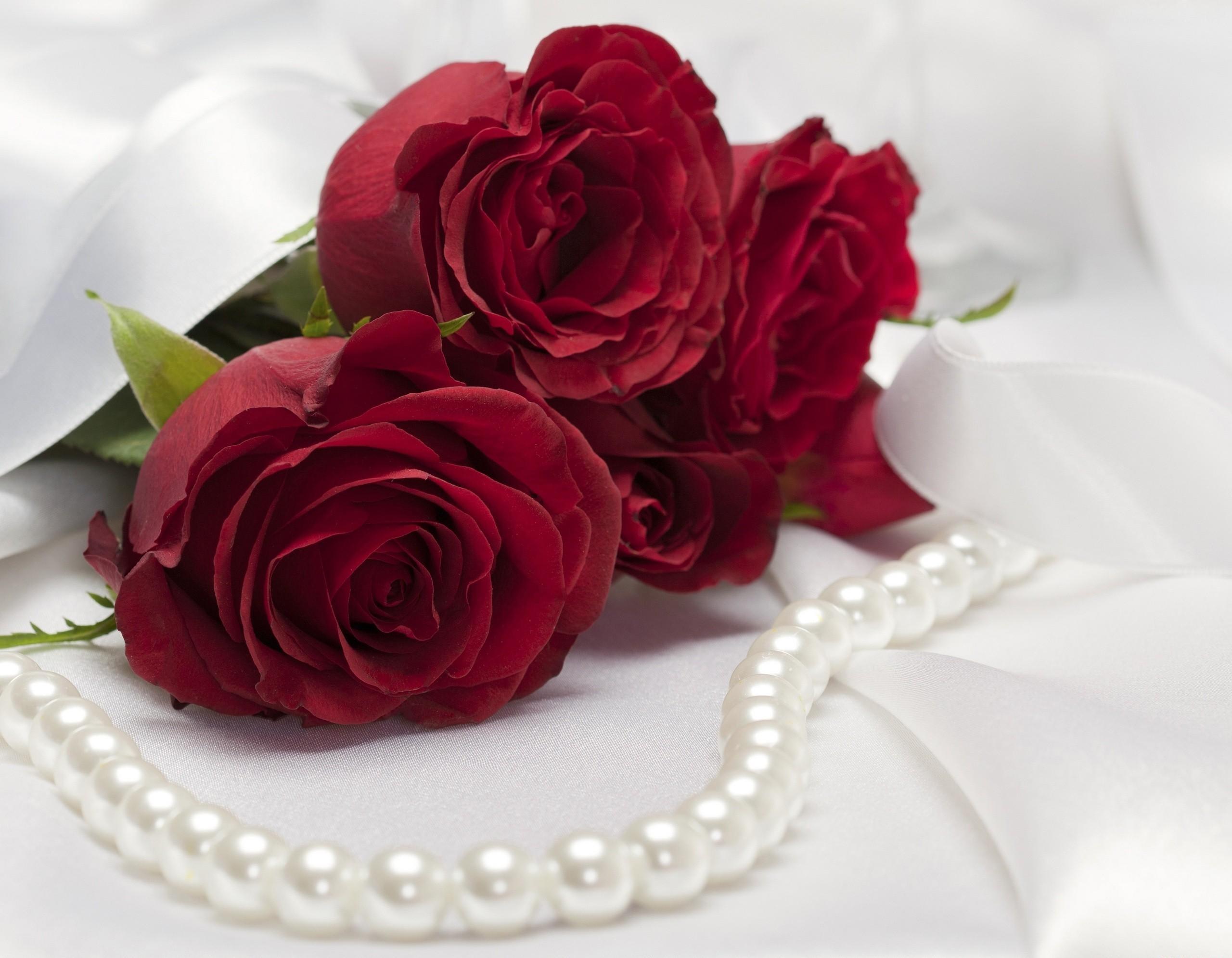 Открытки розы для любимой девушки