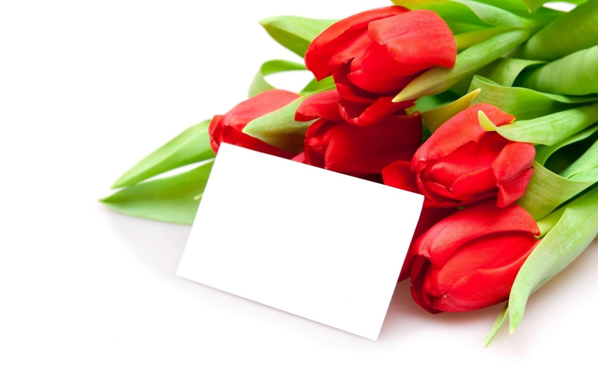 Открытка с днём рождения женщине в стихах красивые фото тюльпаны