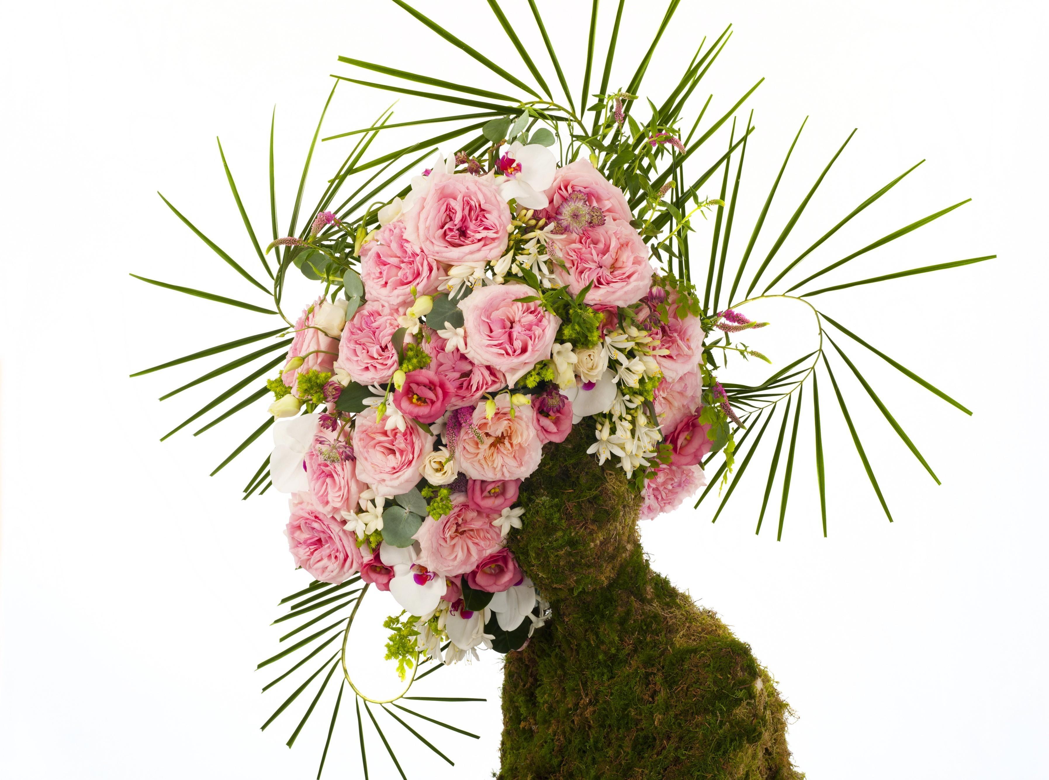 fond d 39 cran bois branche art fleur plante des roses composition plante terrestre. Black Bedroom Furniture Sets. Home Design Ideas