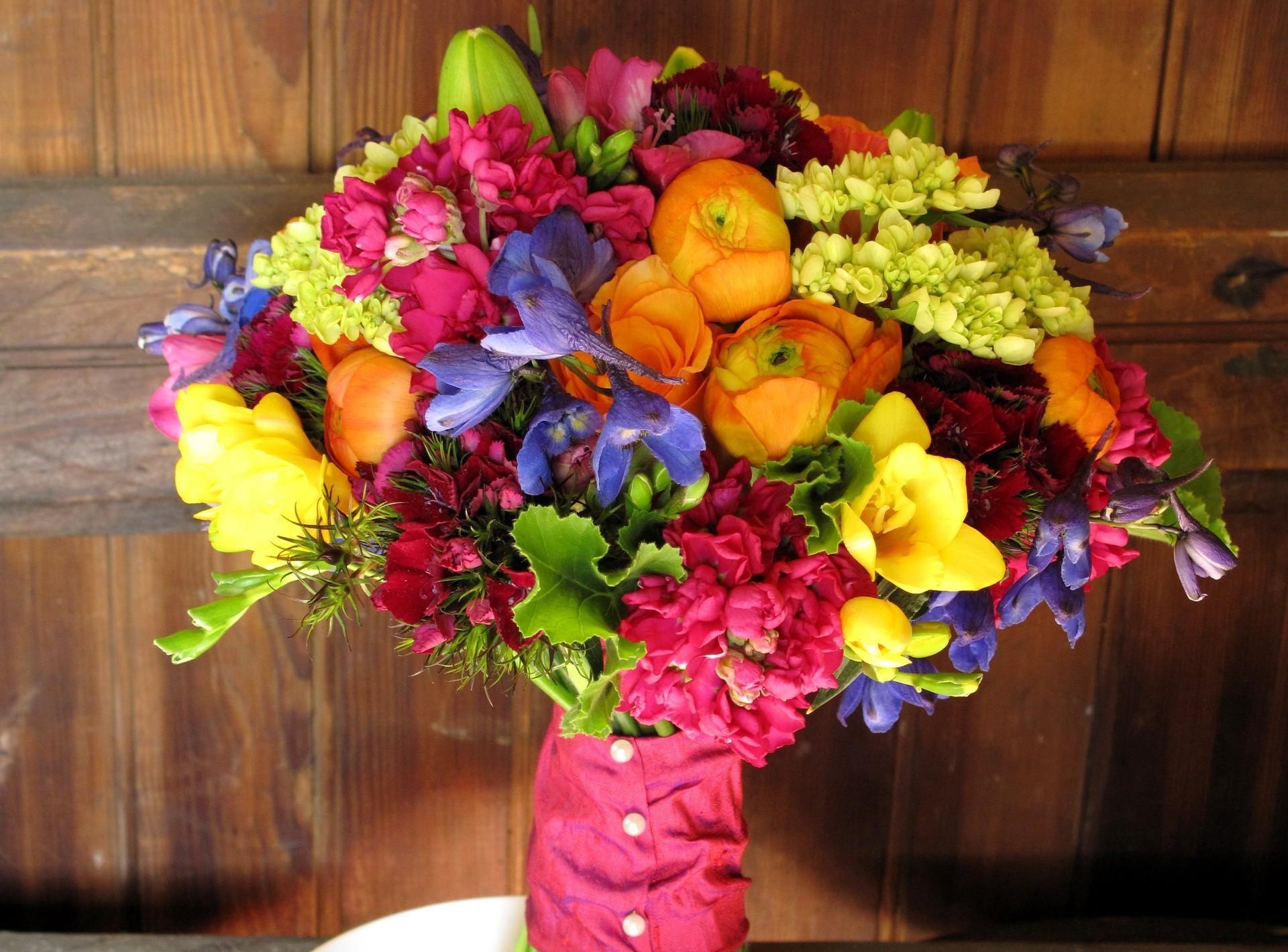 Wallpaper : yellow, bright, beautiful, plant, flora, petal, retail ...