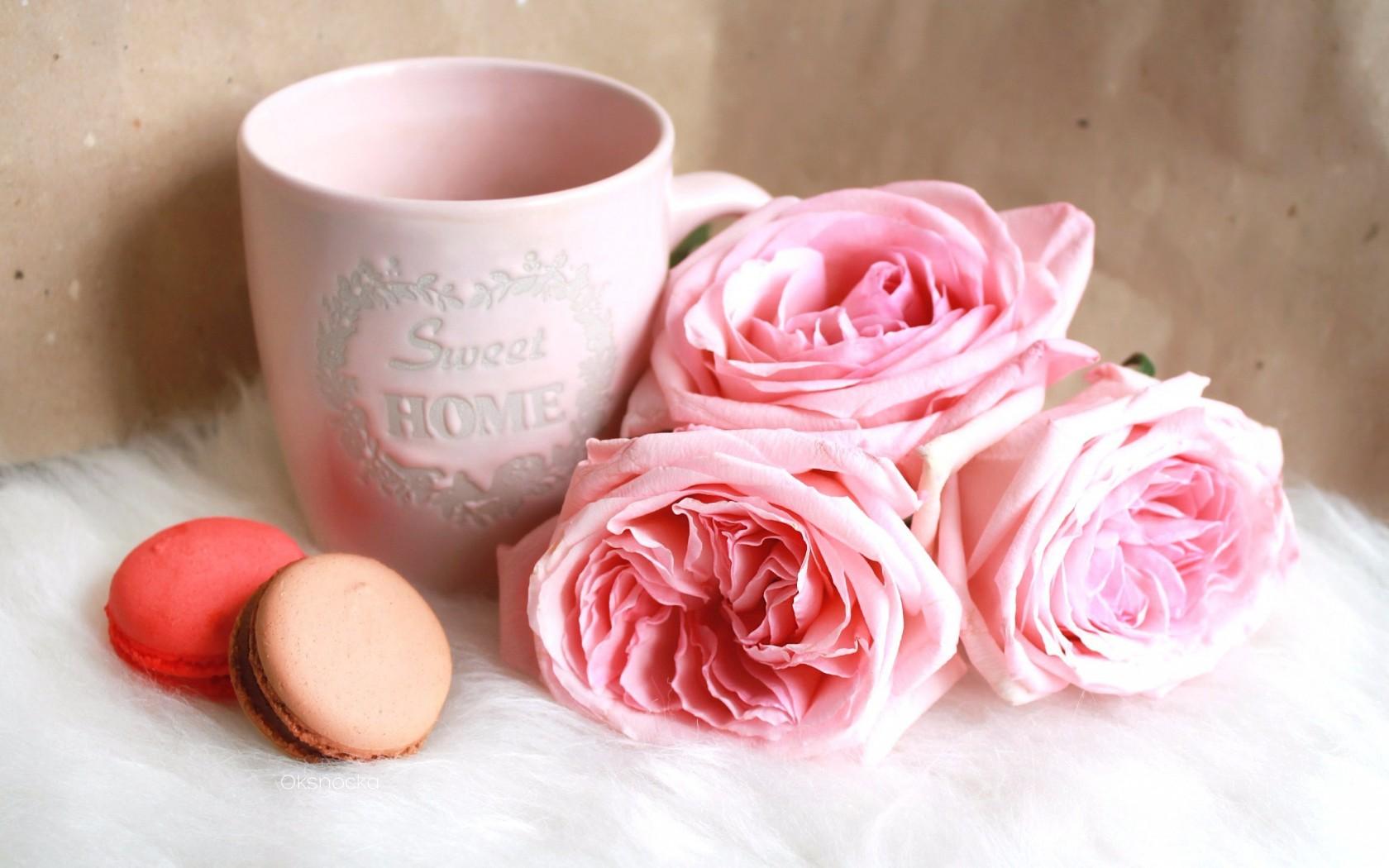 кассовый доброе утро картинки розовые розы как раз