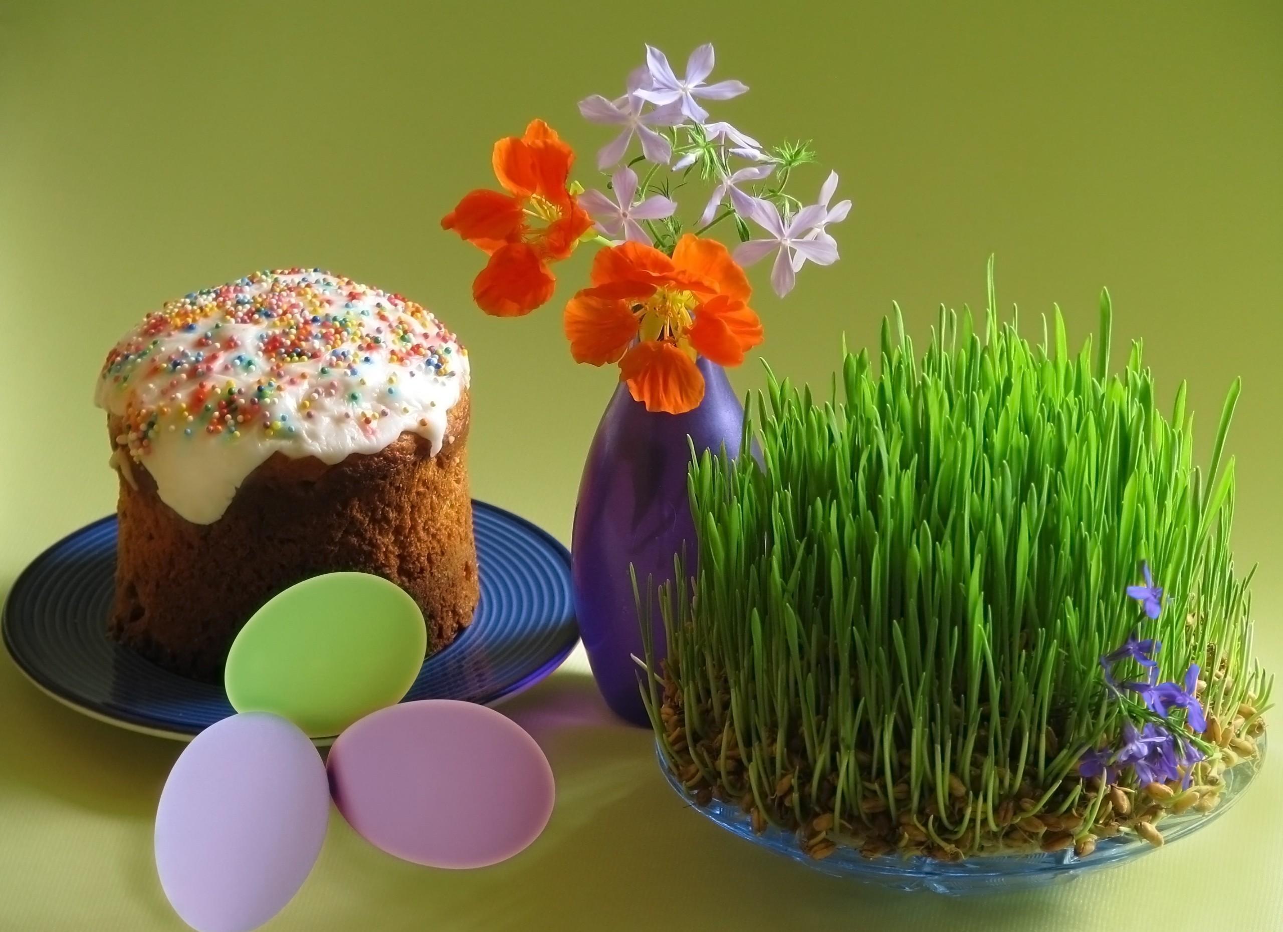 Hintergrundbilder Lebensmittel Eier Gras Teller Kuchen Urlaub