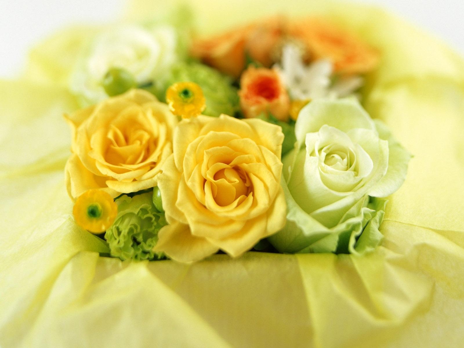 открытки с желтыми цветами дрель балеринку