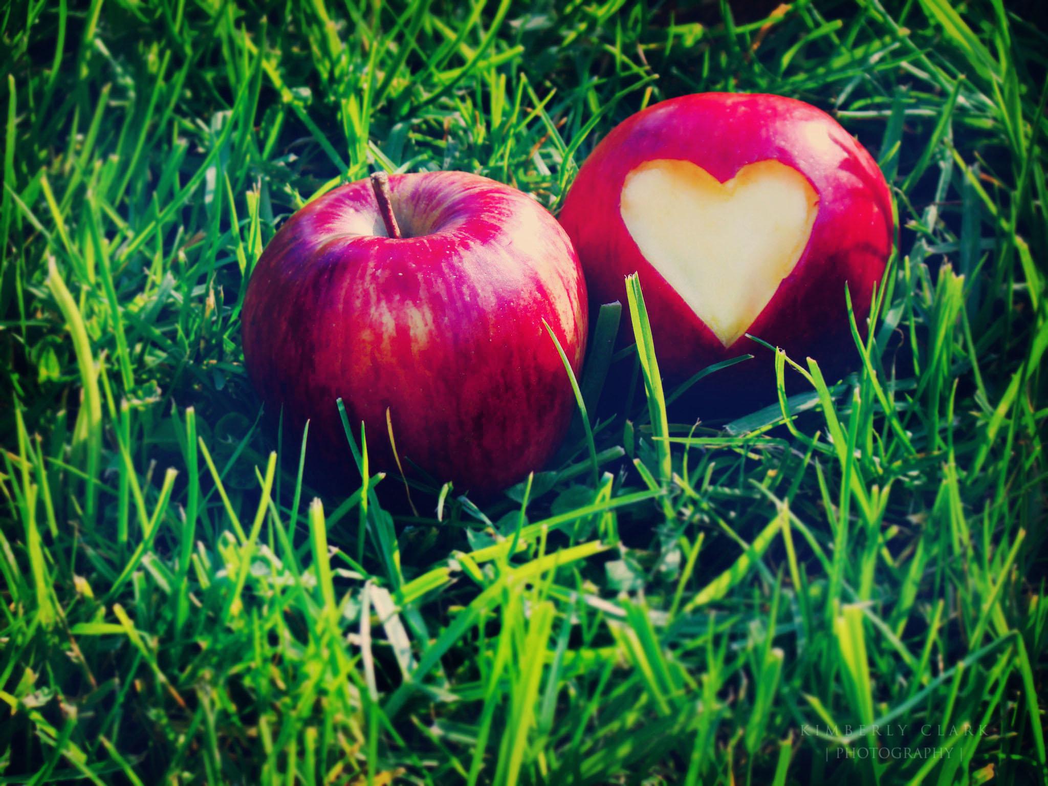 Яблочки любви картинки