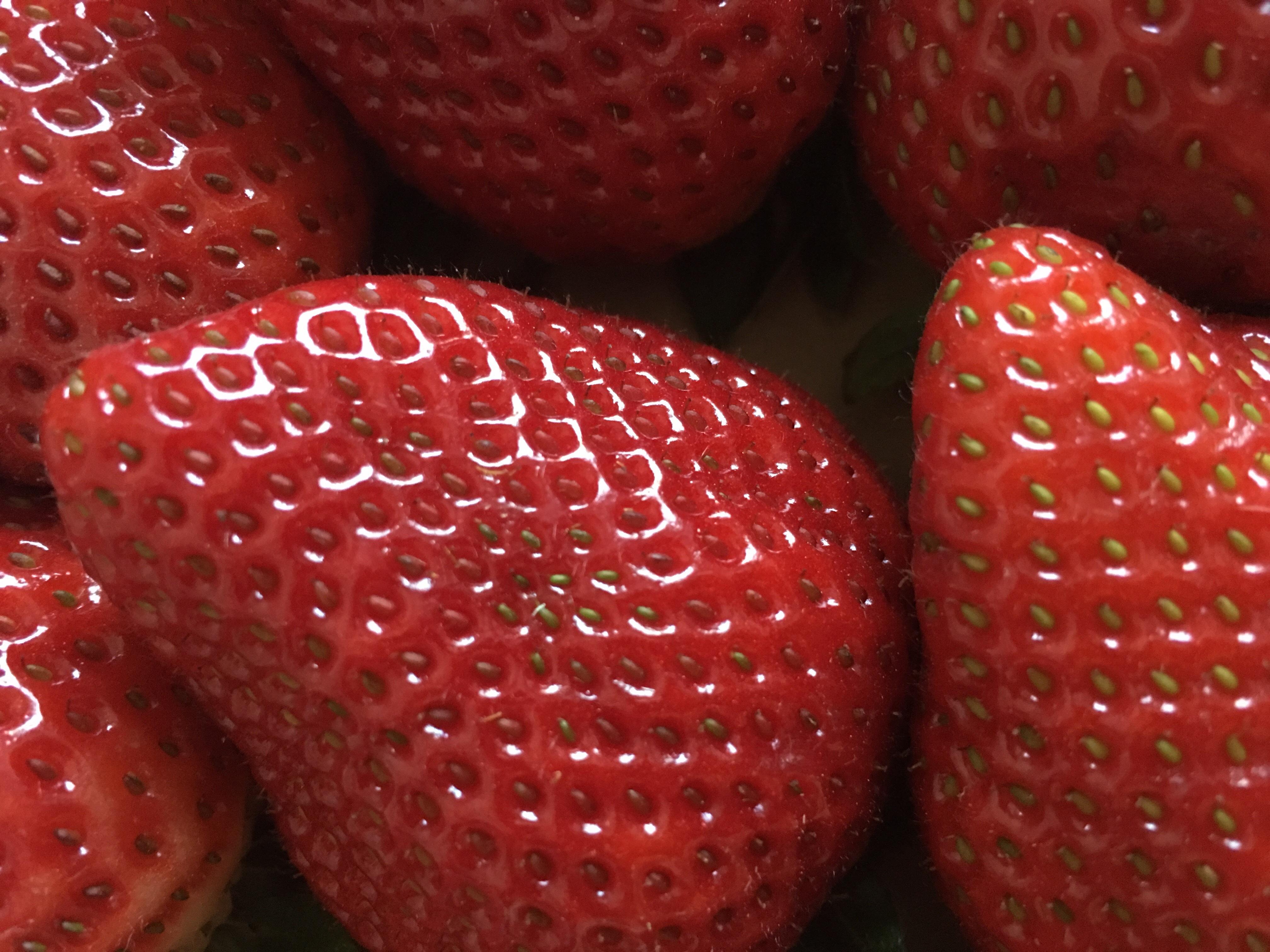 デスクトップ壁紙 フード 赤 マクロ フルーツ いちご ベリー