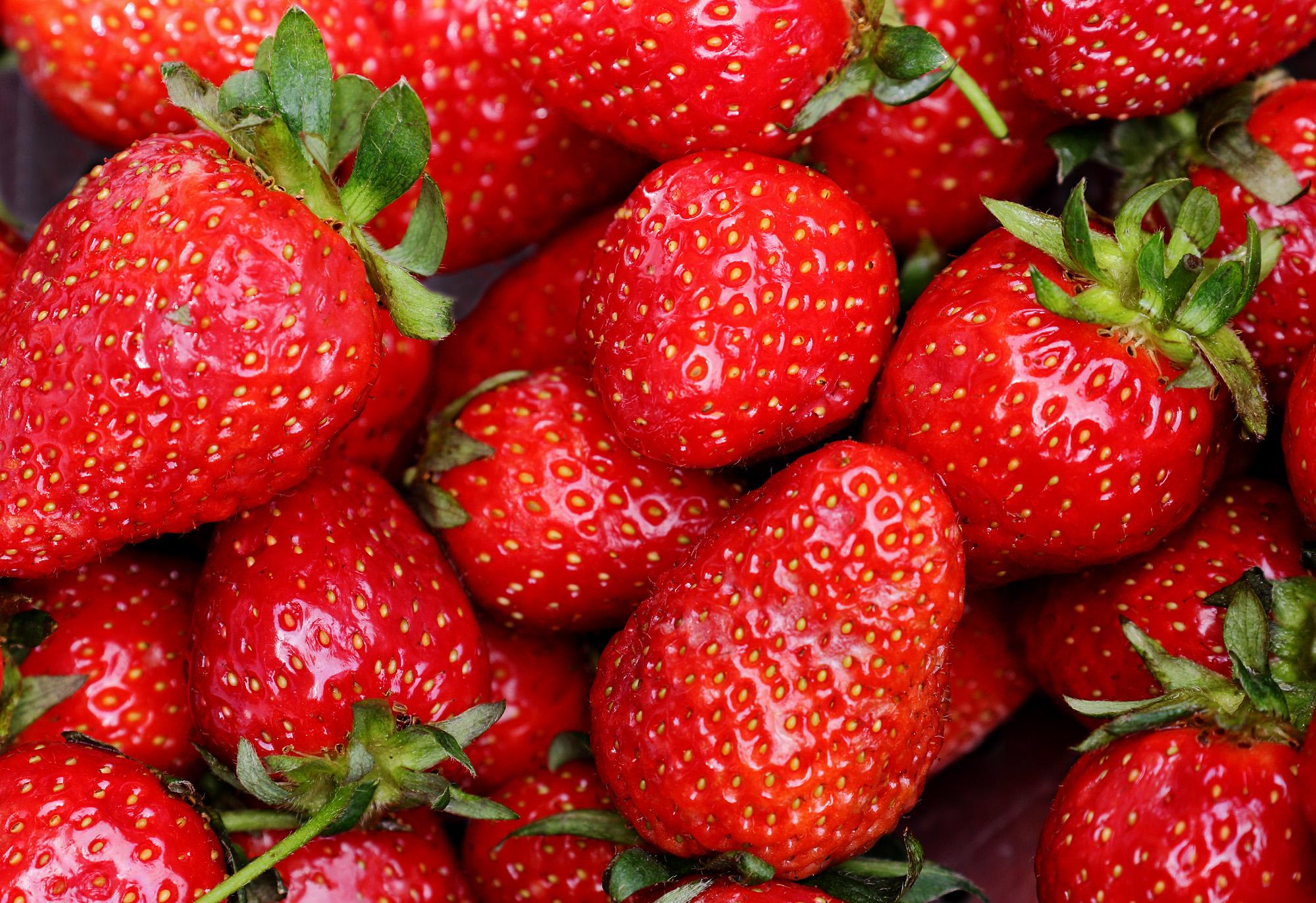 Wallpaper : food, red, plants, fruit, Frankfurt, green, strawberries ...