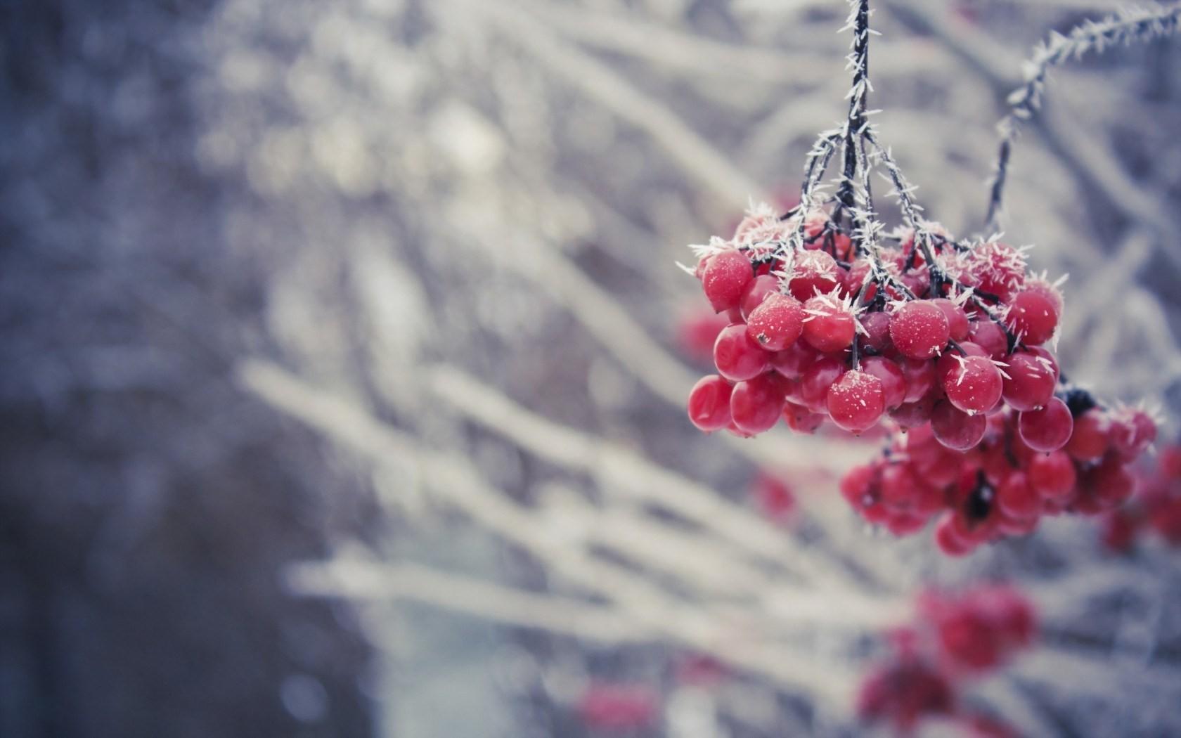 Ванильные картинки о зиме
