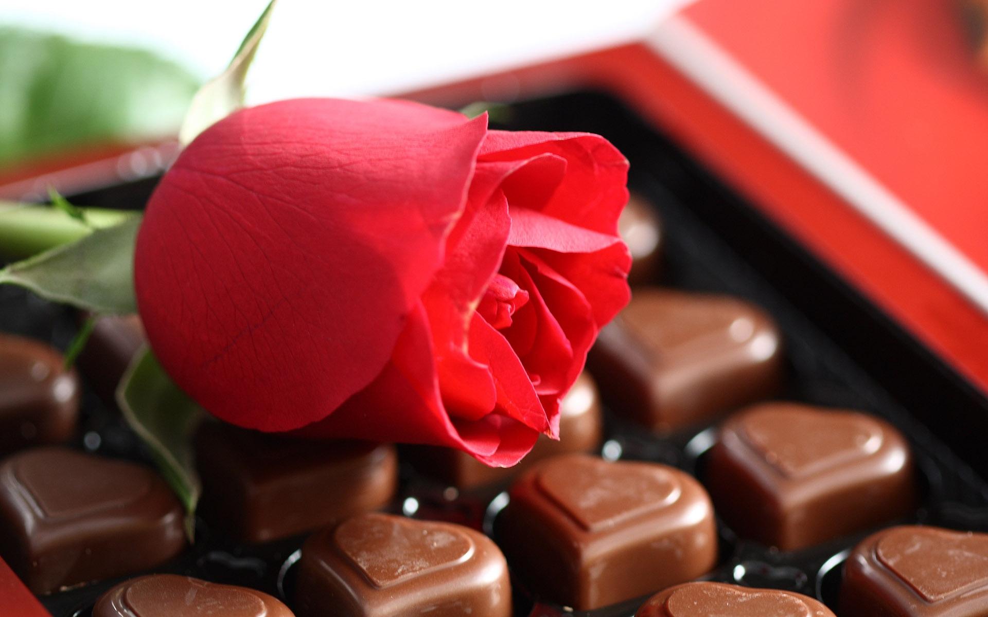 Fond D Ecran Aliments Rouge Bonbons Chocolat Dessert Fleur
