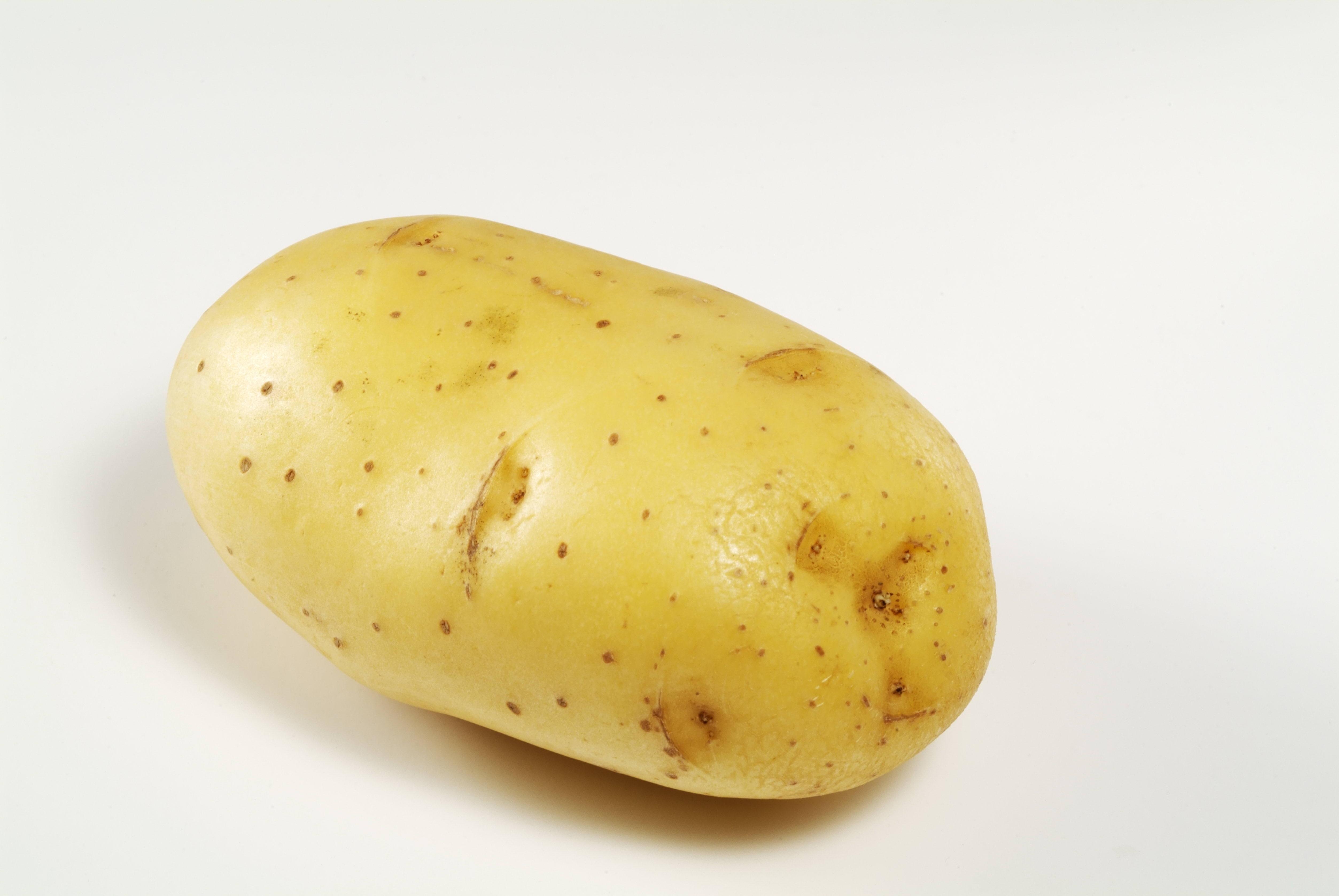 овощи картошка картинки встроенной