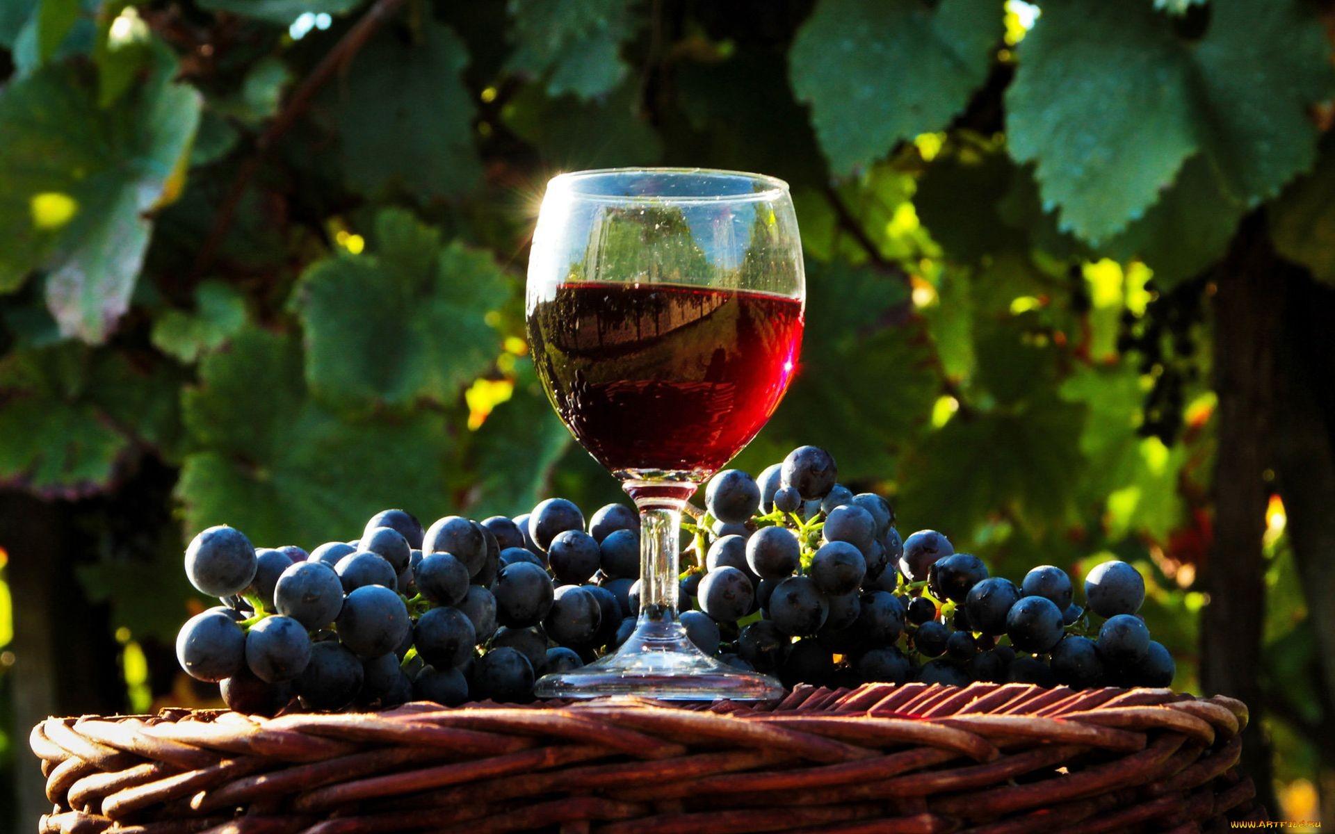 Wallpaper Food Fruit Green Drink Grapes Alcohol Grape Color