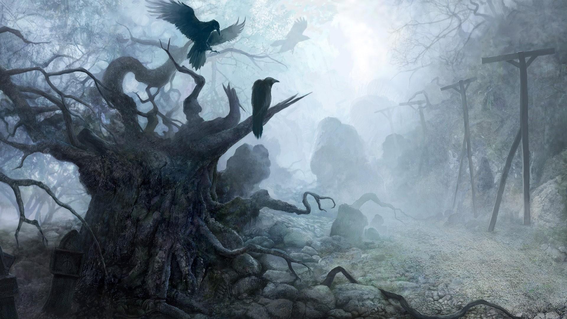 Wallpaper Forest Birds Fantasy Art Mist Raven Fog