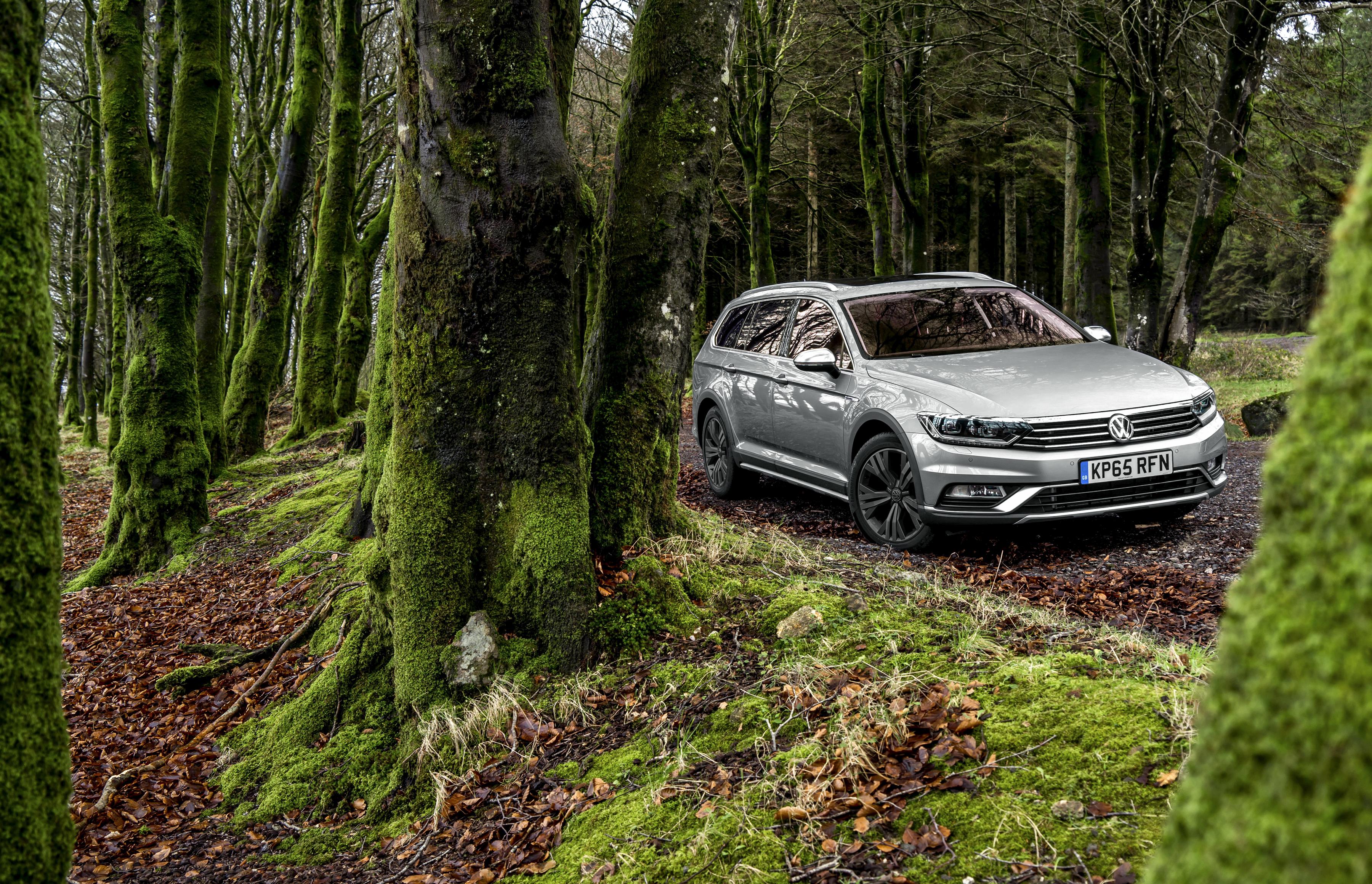 формы машина в лесу картинка для главная особенность климата
