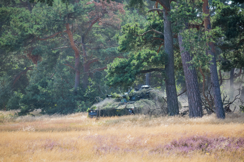 Wallpaper Forest Tank Wildlife Military Wilderness Jungle