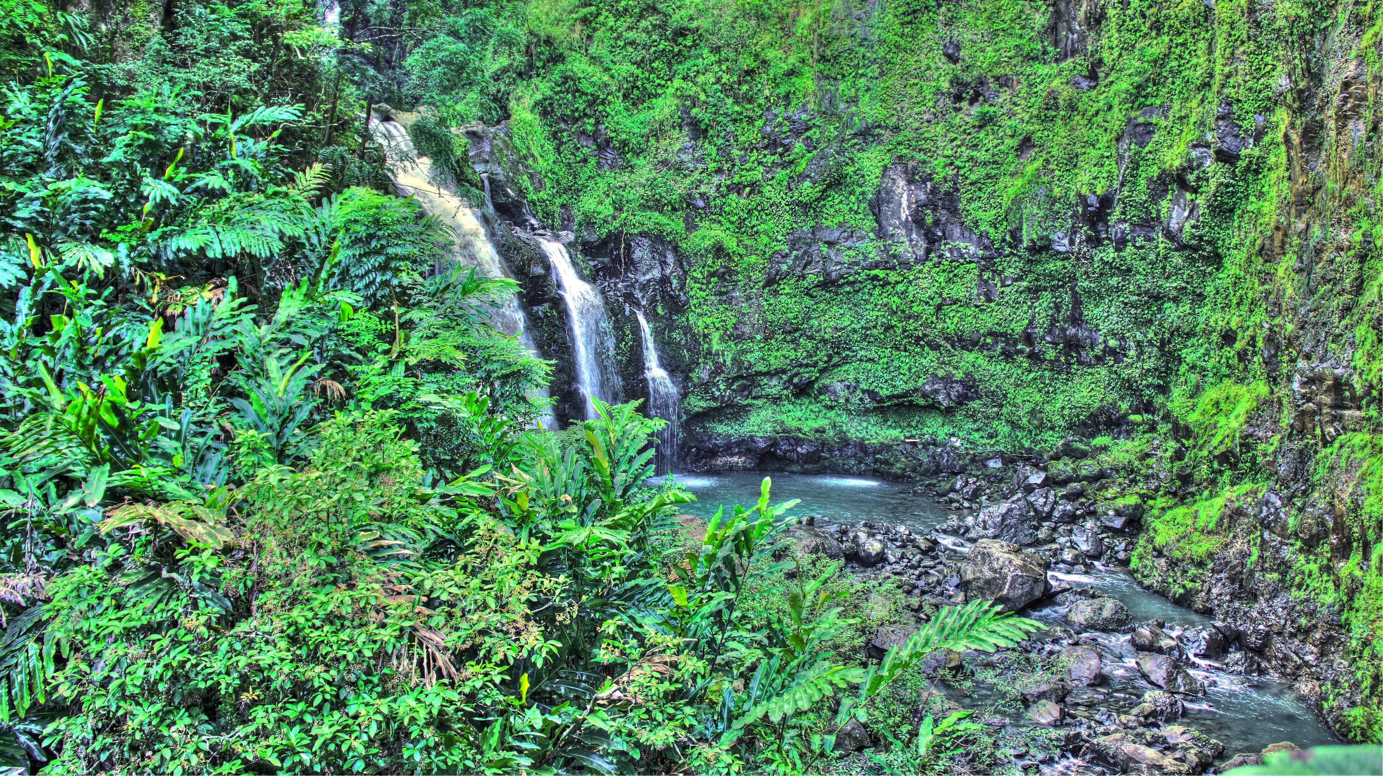 Wallpaper Waterfall Beach Palm Trees Jungle Stream
