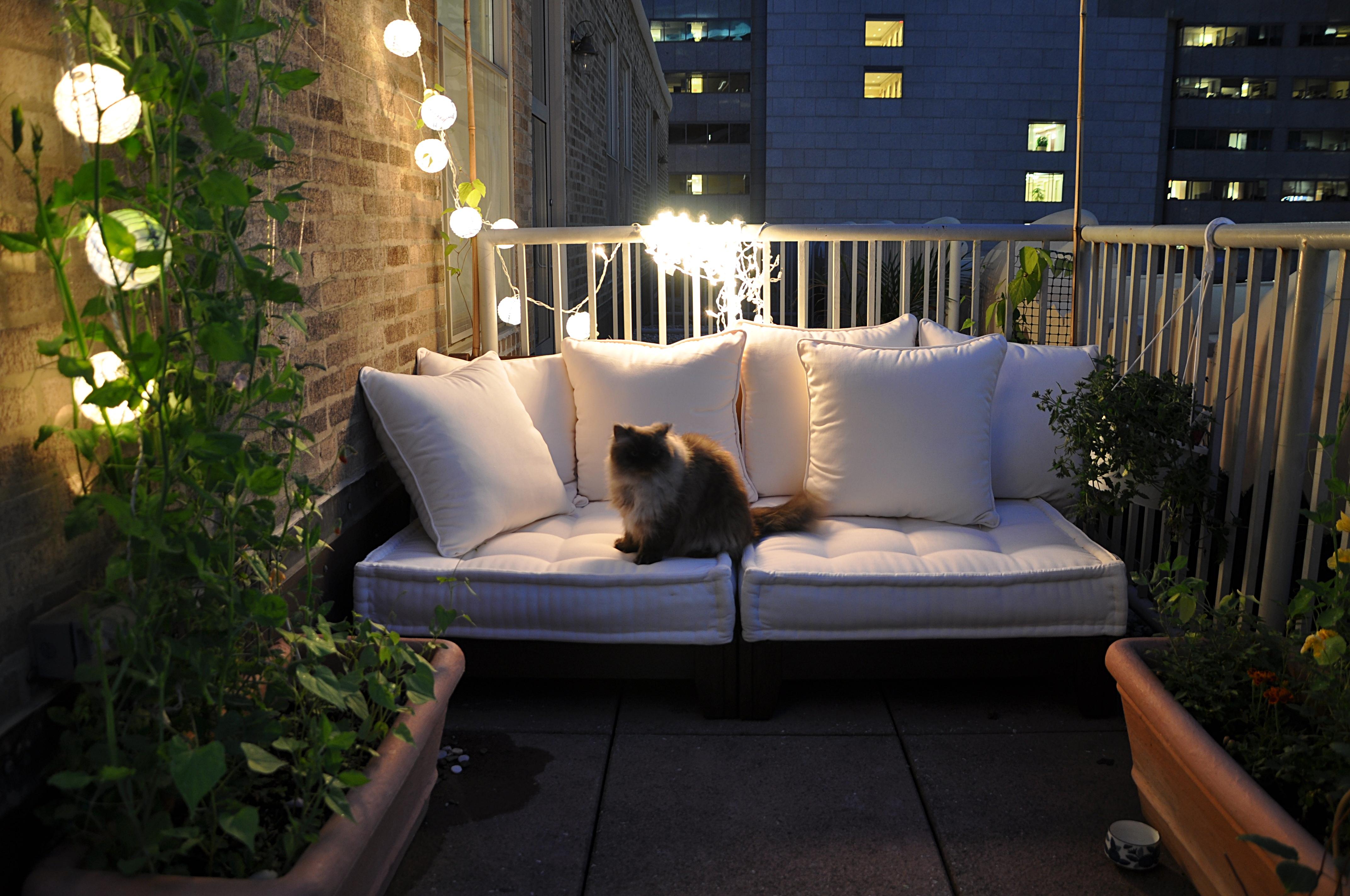 Fondos de pantalla : casa, iluminación, sofá, patio interior, diseño ...