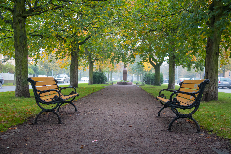 Fondos de pantalla jard n ciudad c sped parque verde for Banco de paletas al aire libre