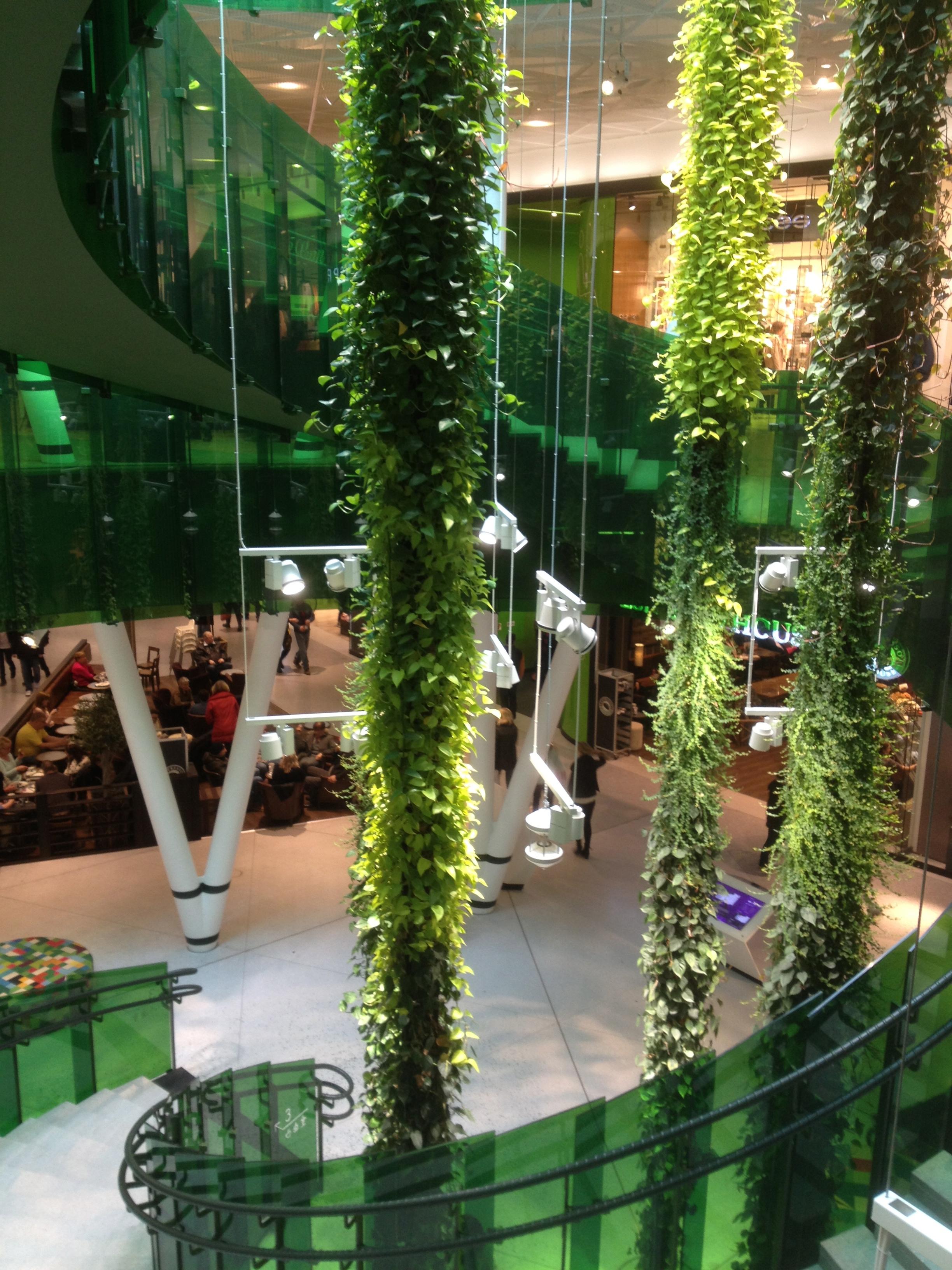 Fond d 39 cran jardin vert design d 39 int rieur achats for Achat plante jardin
