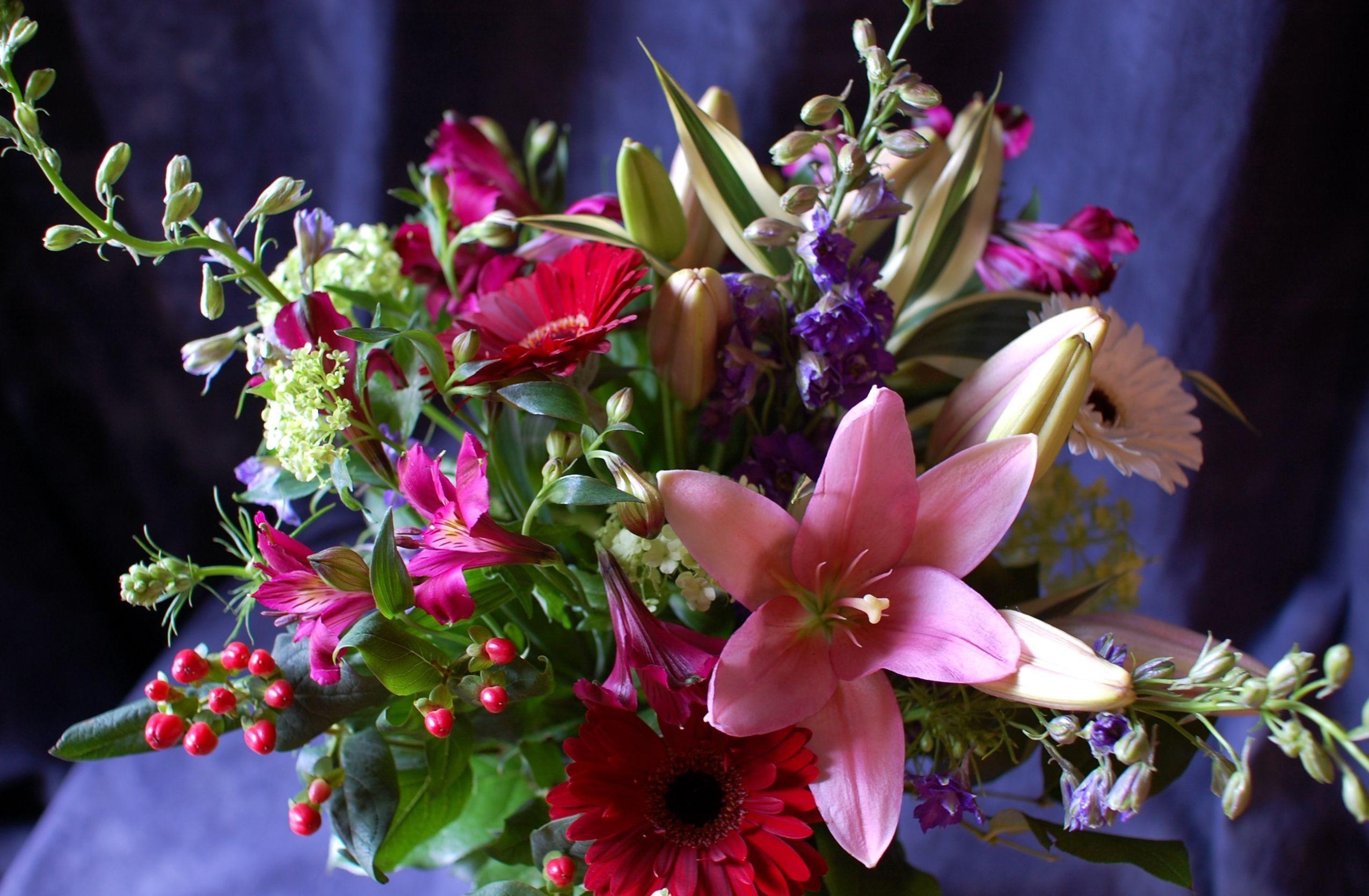 меня супер красивые картинки с цветами просто все
