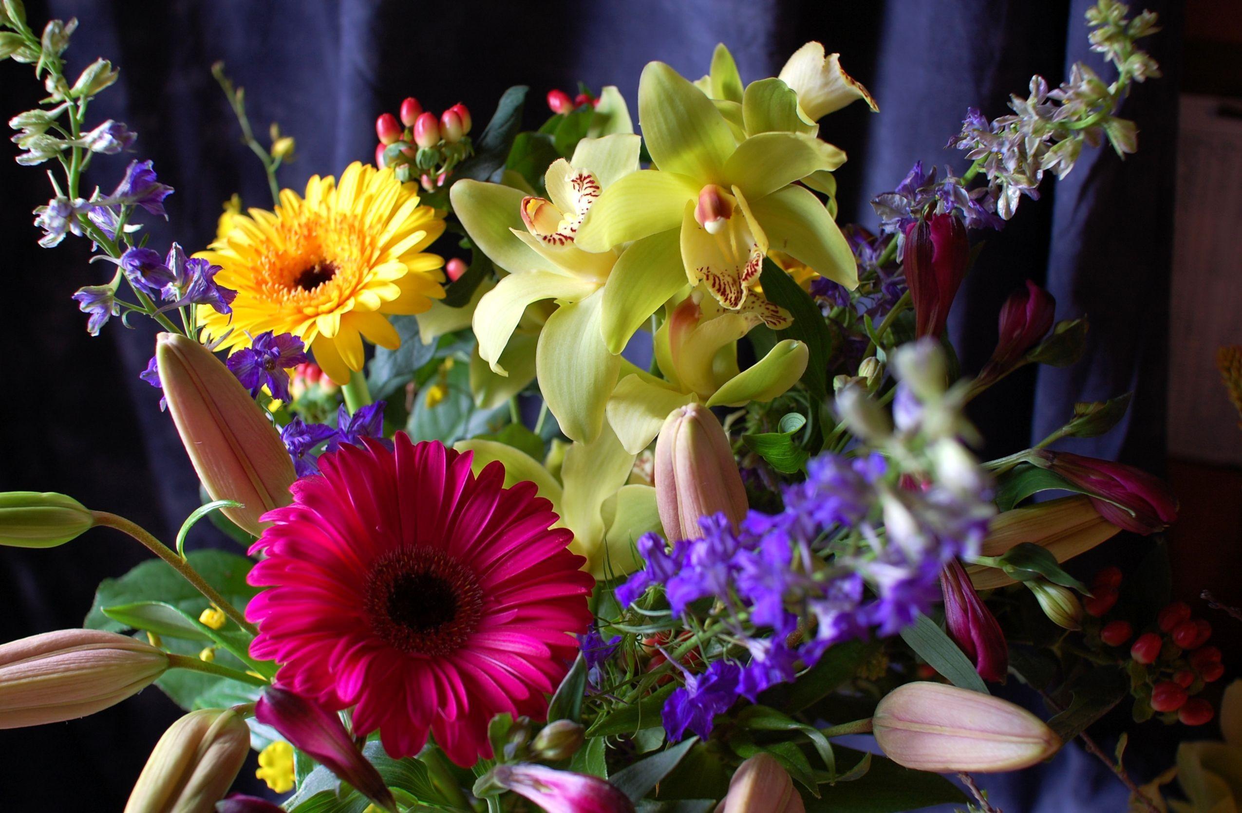 Обои для рабочего стола цветы орхидеи букеты