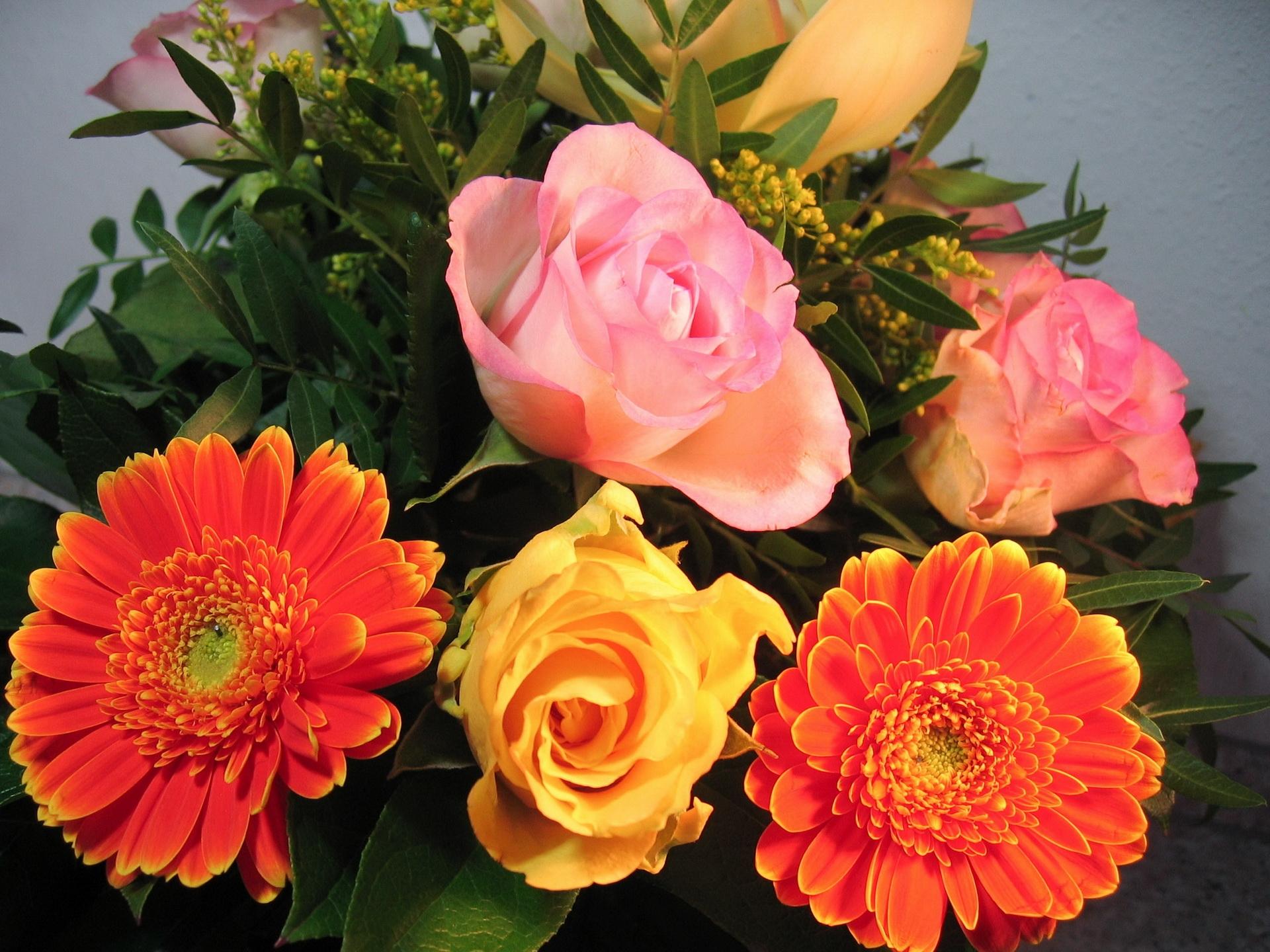 Обои на рабочий стол букеты розы герберы лилии гвоздики