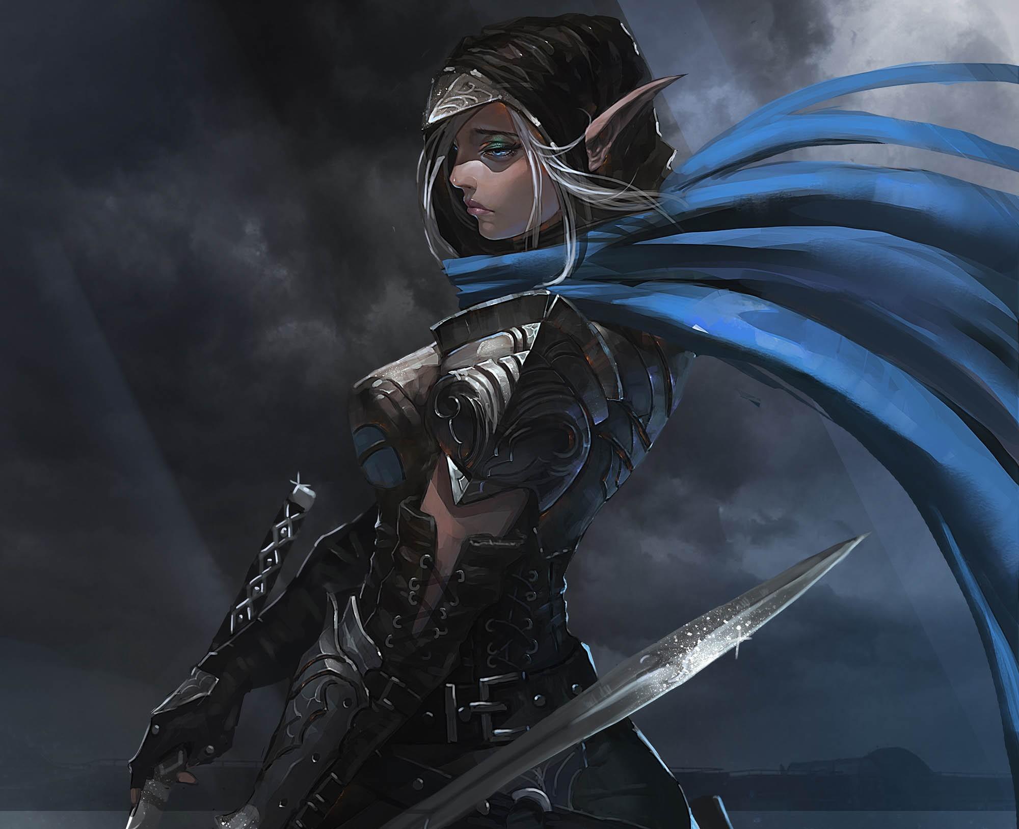 Fantasy Art Elves Wallpapers Hd Desktop And Mobile: Wallpaper : Girl, Elf, Fantasy, Armor, Sword 2000x1628