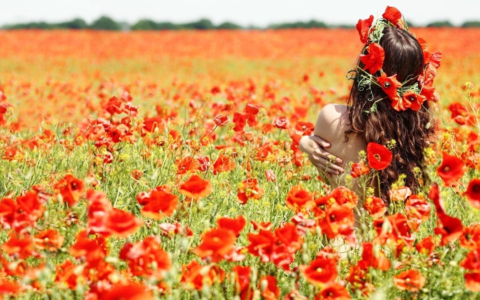 Hintergrundbilder Mädchen Feld Blumen Mohnblumen Kranz